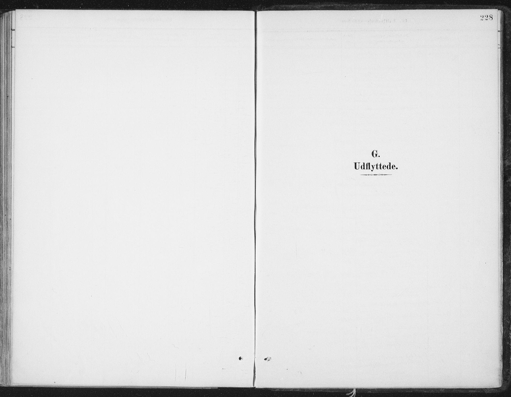 SAT, Ministerialprotokoller, klokkerbøker og fødselsregistre - Nord-Trøndelag, 786/L0687: Ministerialbok nr. 786A03, 1888-1898, s. 228