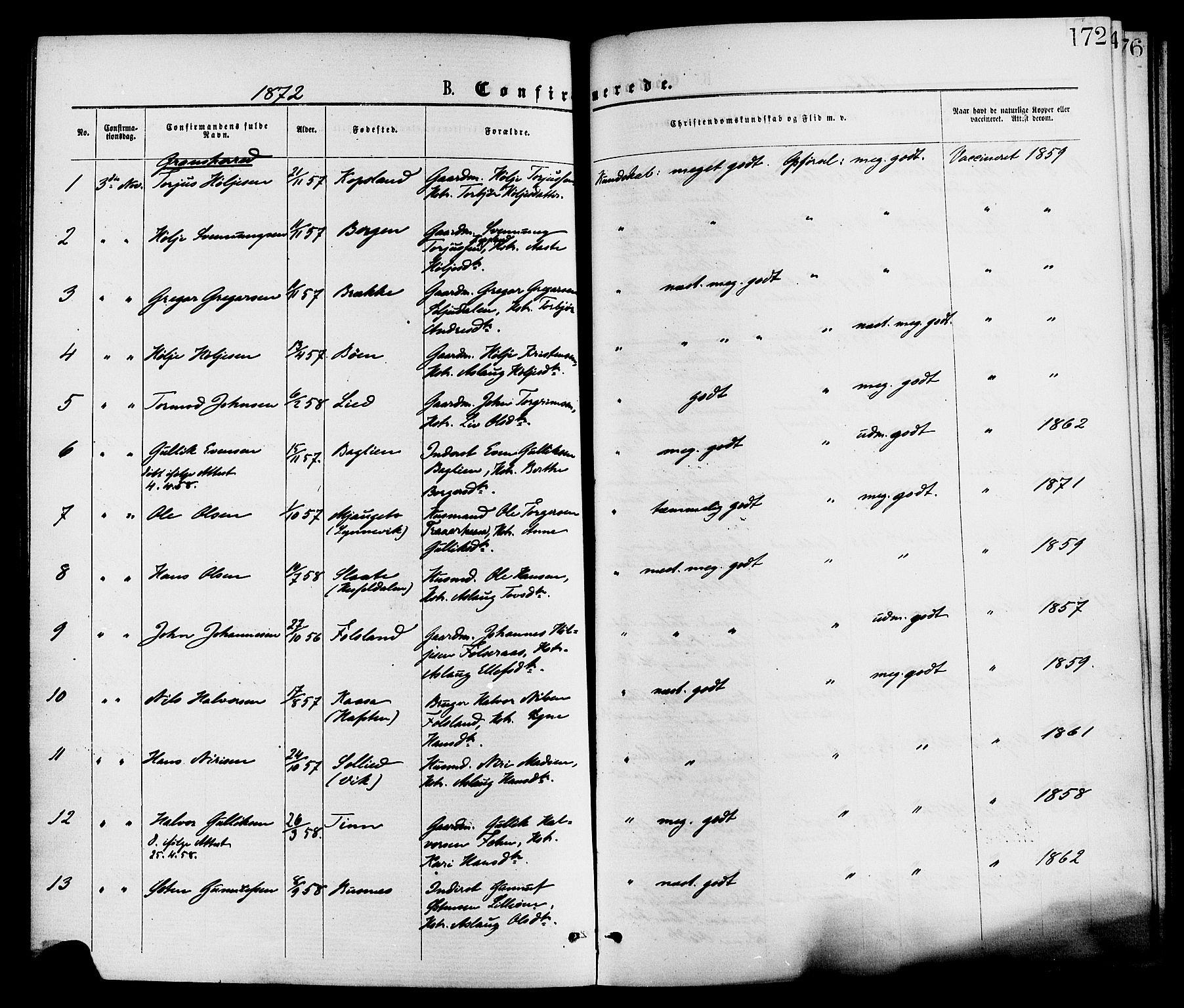 SAKO, Gransherad kirkebøker, F/Fa/L0004: Ministerialbok nr. I 4, 1871-1886, s. 172