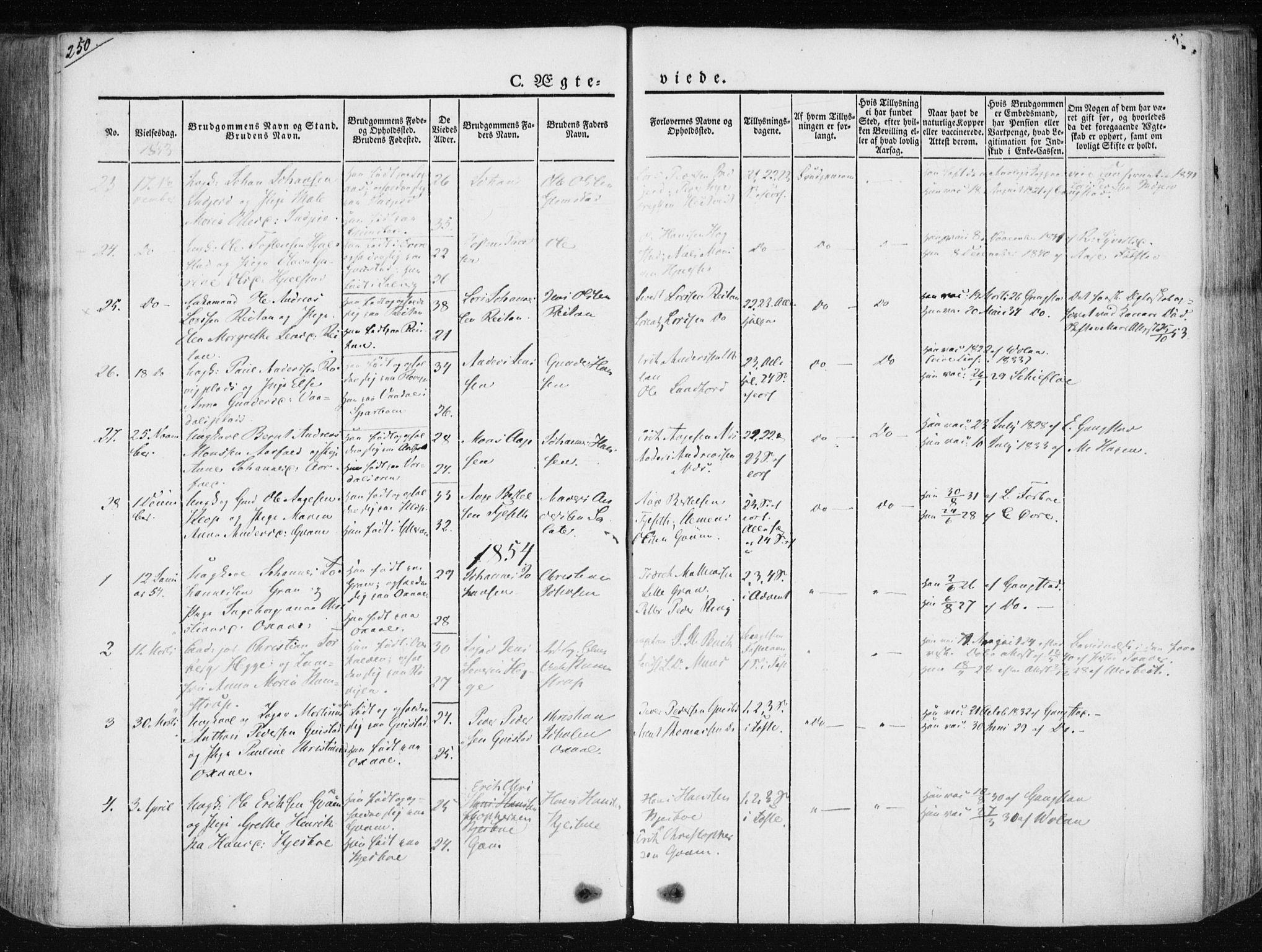 SAT, Ministerialprotokoller, klokkerbøker og fødselsregistre - Nord-Trøndelag, 730/L0280: Ministerialbok nr. 730A07 /1, 1840-1854, s. 250