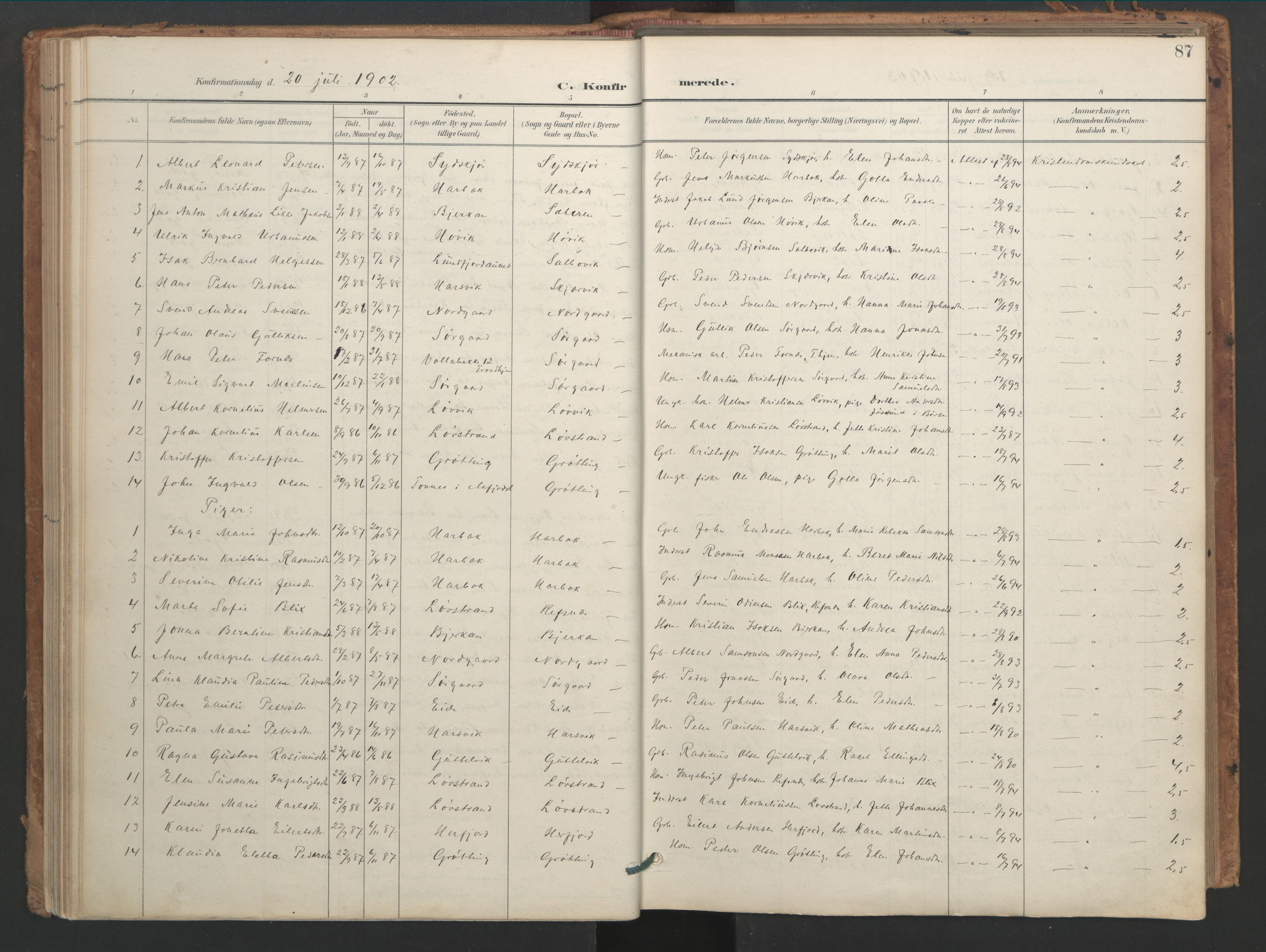 SAT, Ministerialprotokoller, klokkerbøker og fødselsregistre - Sør-Trøndelag, 656/L0693: Ministerialbok nr. 656A02, 1894-1913, s. 87