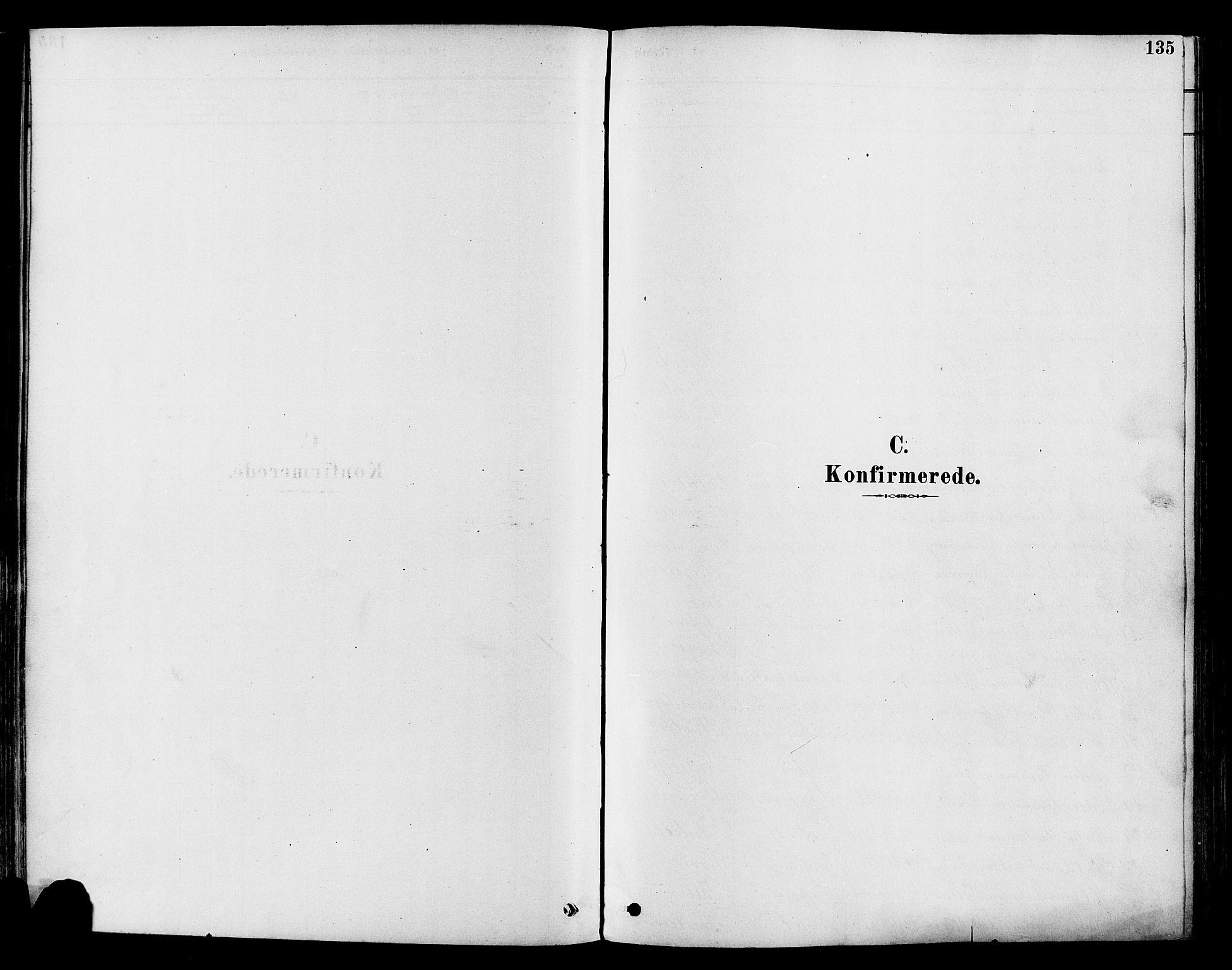 SAH, Vestre Toten prestekontor, H/Ha/Haa/L0009: Ministerialbok nr. 9, 1878-1894, s. 135