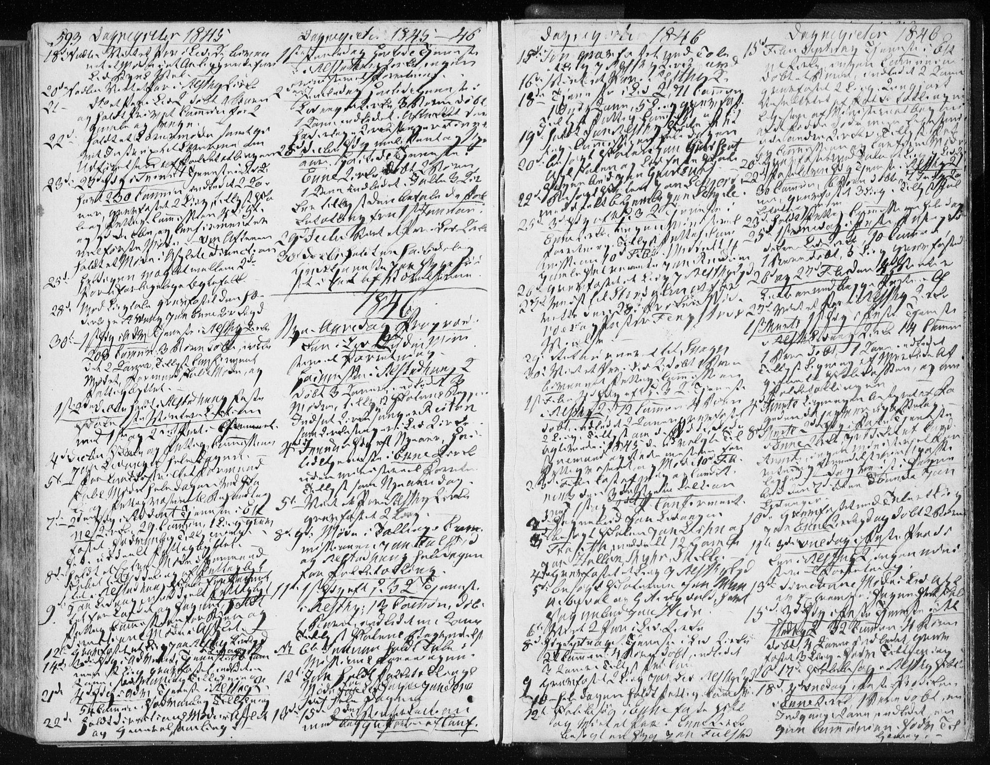 SAT, Ministerialprotokoller, klokkerbøker og fødselsregistre - Nord-Trøndelag, 717/L0154: Ministerialbok nr. 717A06 /1, 1836-1849, s. 593
