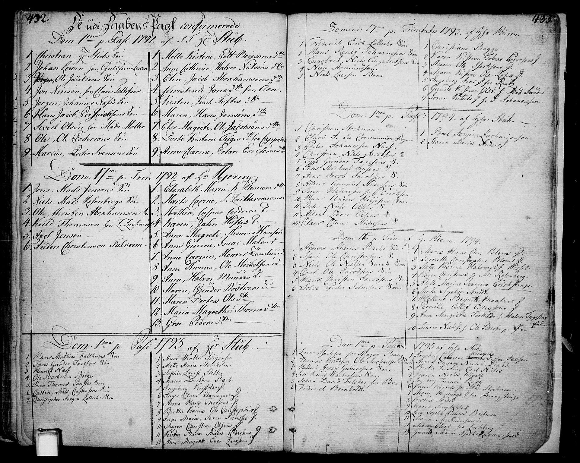 SAKO, Skien kirkebøker, F/Fa/L0004: Ministerialbok nr. 4, 1792-1814, s. 432-433