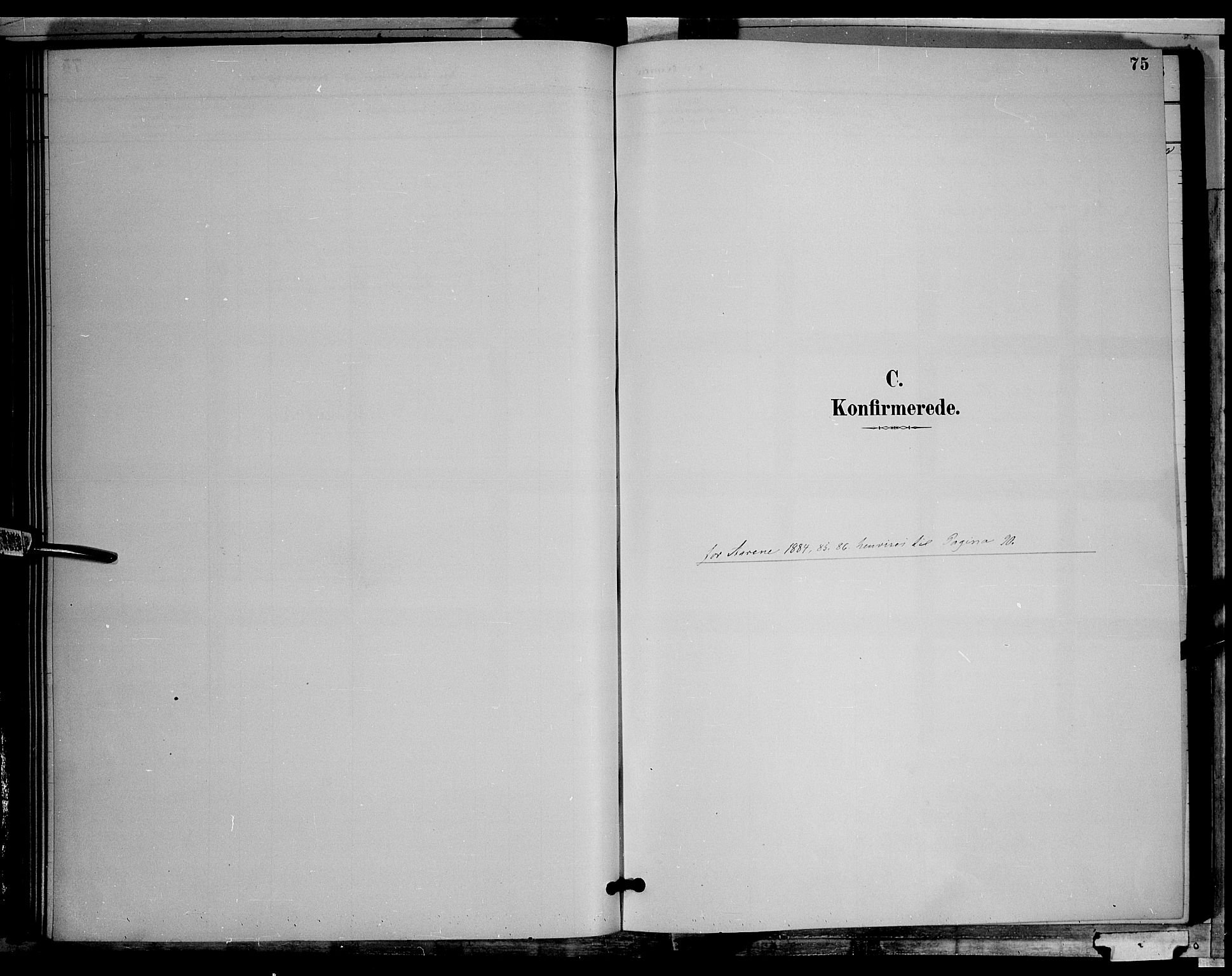 SAH, Søndre Land prestekontor, L/L0002: Klokkerbok nr. 2, 1884-1900, s. 75
