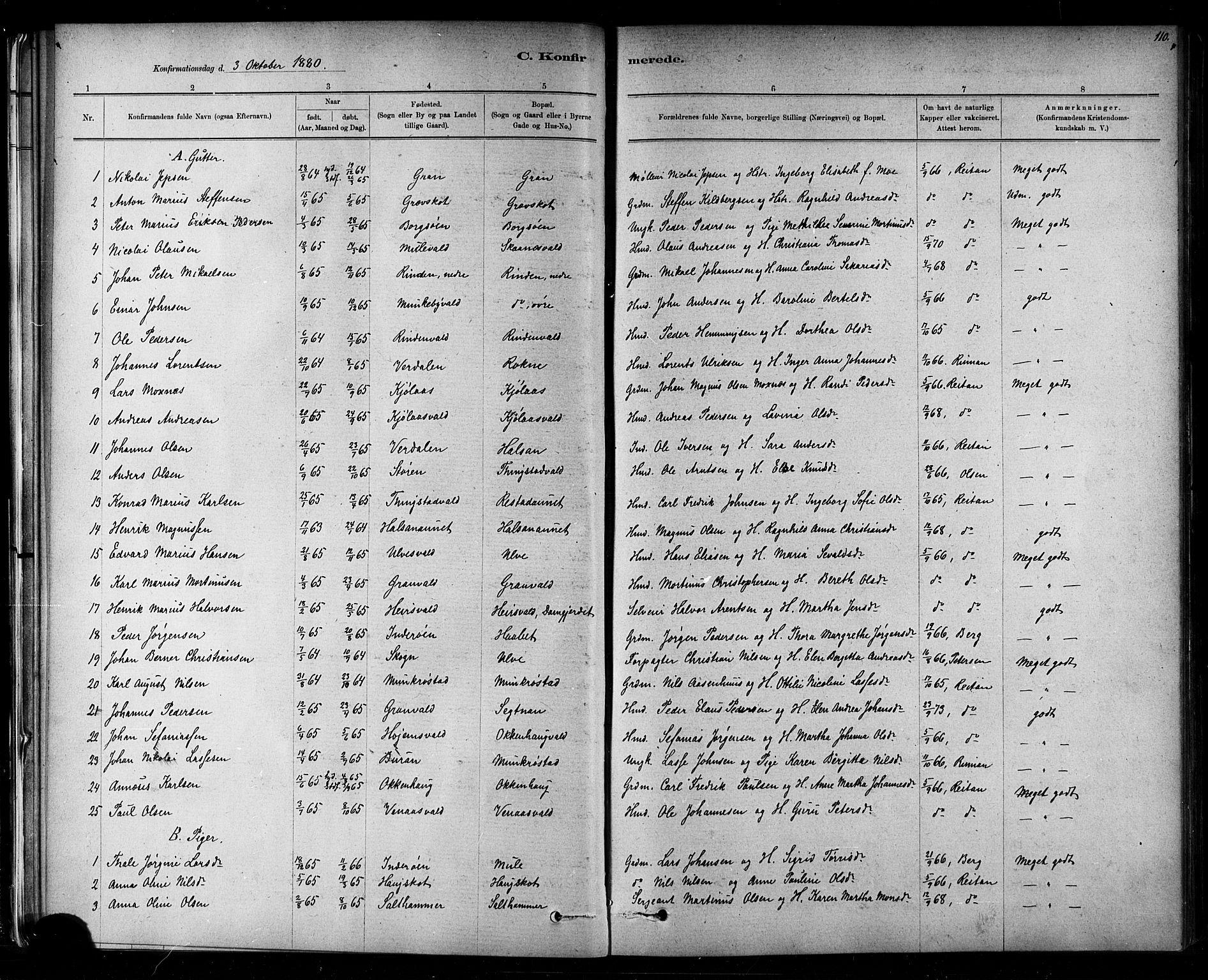 SAT, Ministerialprotokoller, klokkerbøker og fødselsregistre - Nord-Trøndelag, 721/L0208: Klokkerbok nr. 721C01, 1880-1917, s. 110
