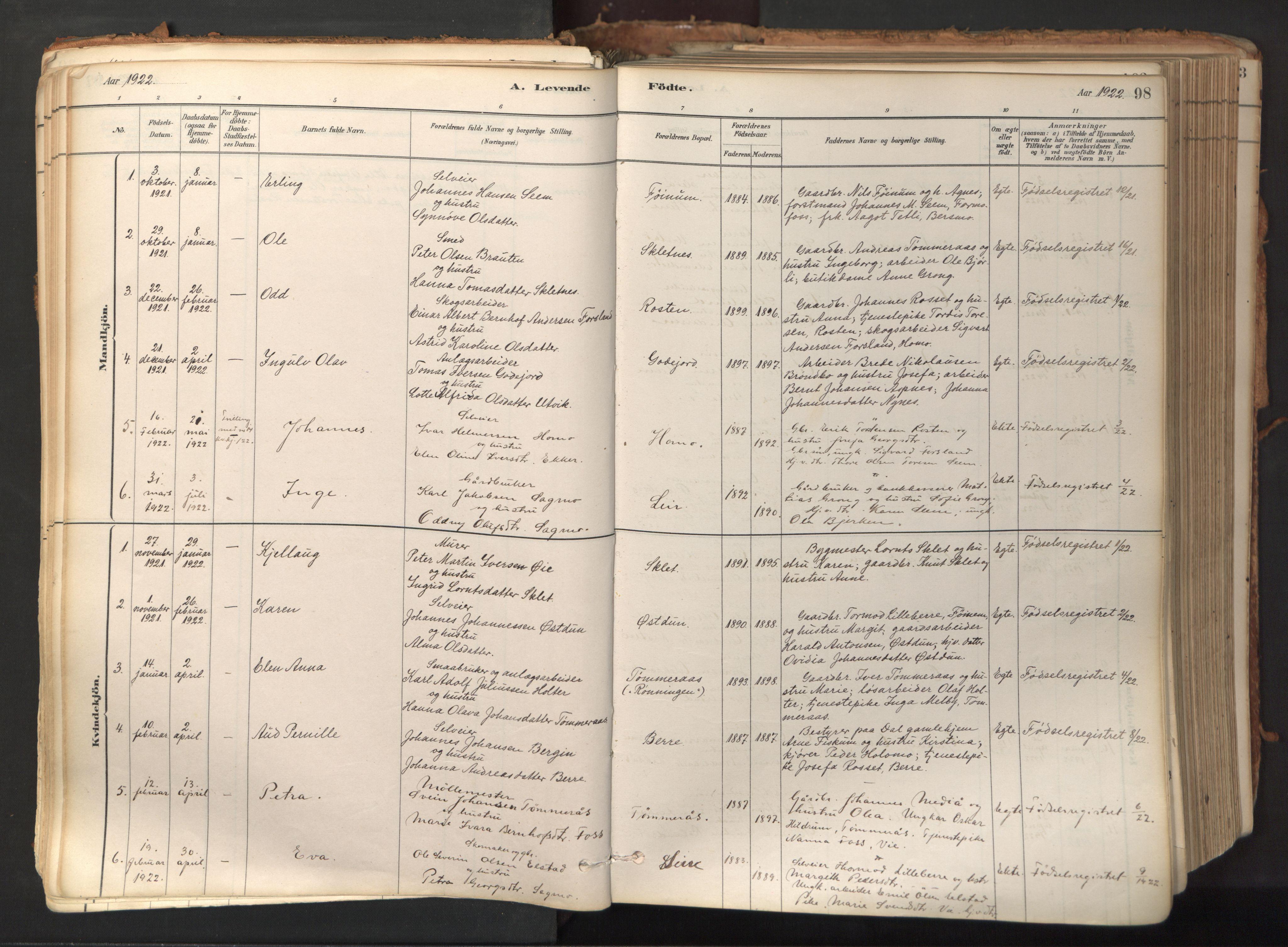 SAT, Ministerialprotokoller, klokkerbøker og fødselsregistre - Nord-Trøndelag, 758/L0519: Ministerialbok nr. 758A04, 1880-1926, s. 98