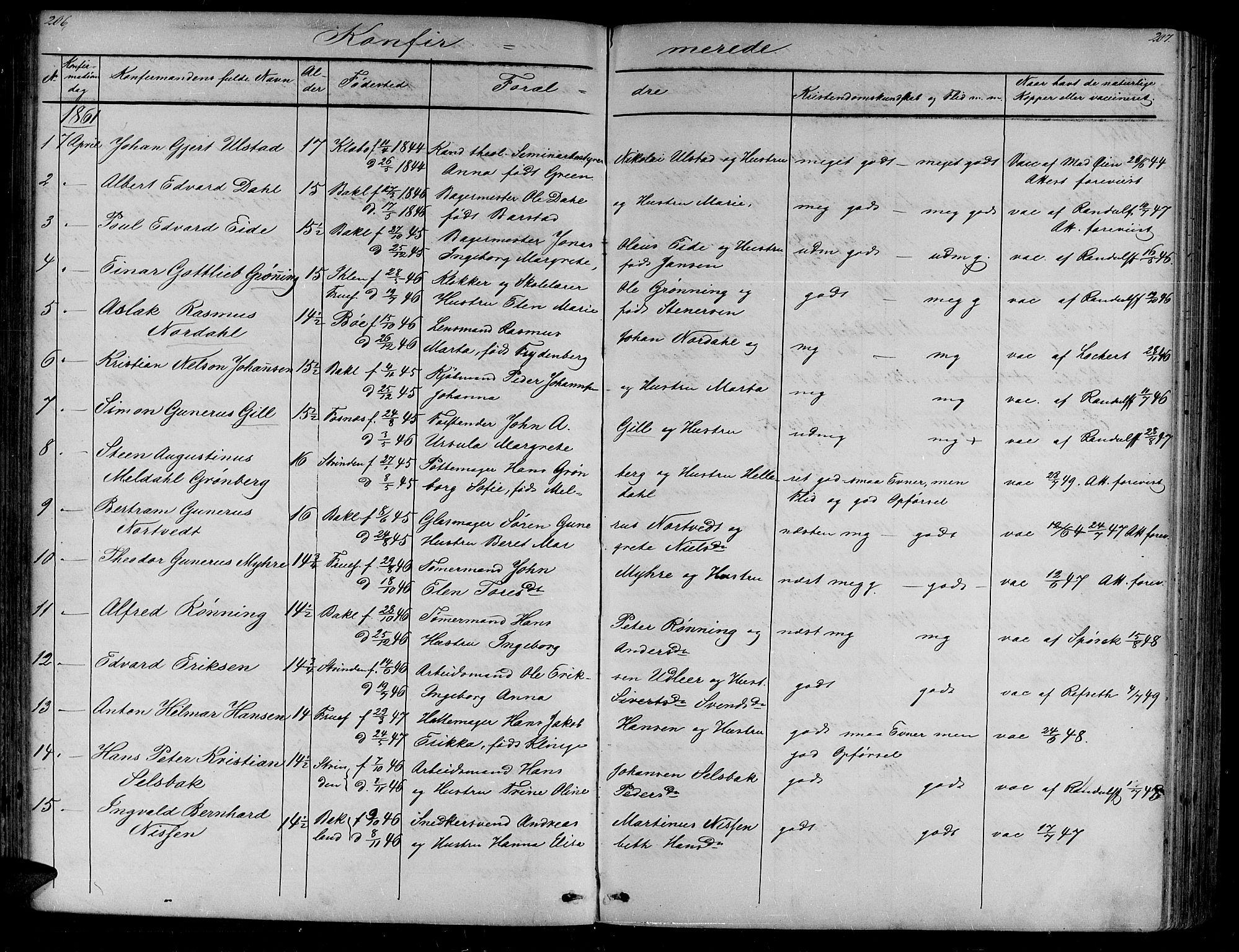 SAT, Ministerialprotokoller, klokkerbøker og fødselsregistre - Sør-Trøndelag, 604/L0219: Klokkerbok nr. 604C02, 1851-1869, s. 206-207