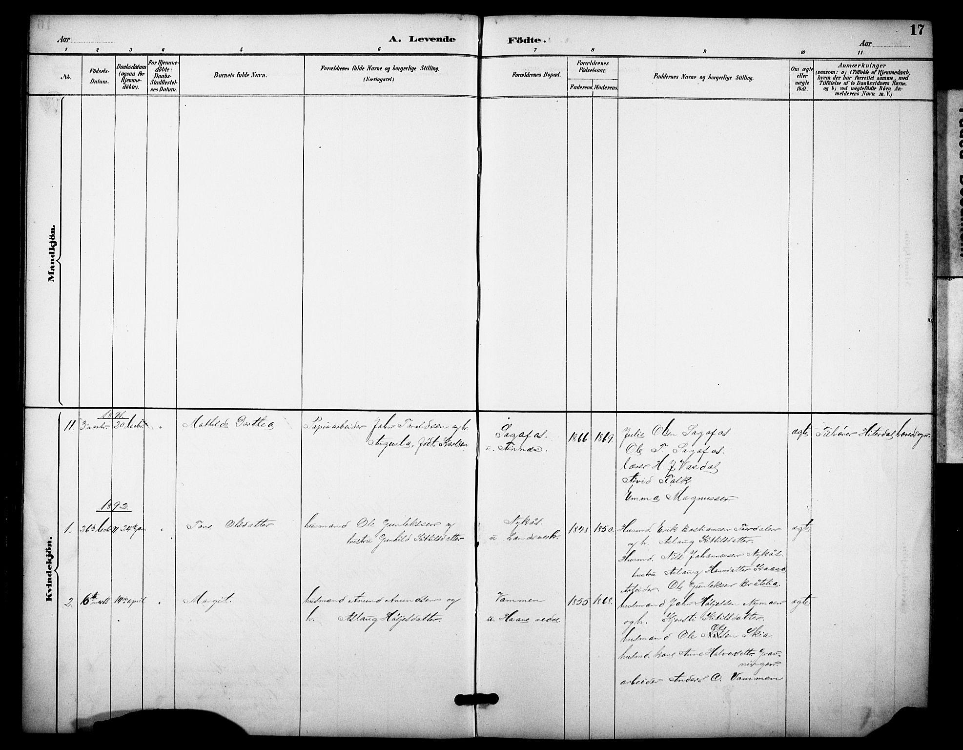 SAKO, Heddal kirkebøker, F/Fb/L0001: Ministerialbok nr. II 1, 1884-1910, s. 17