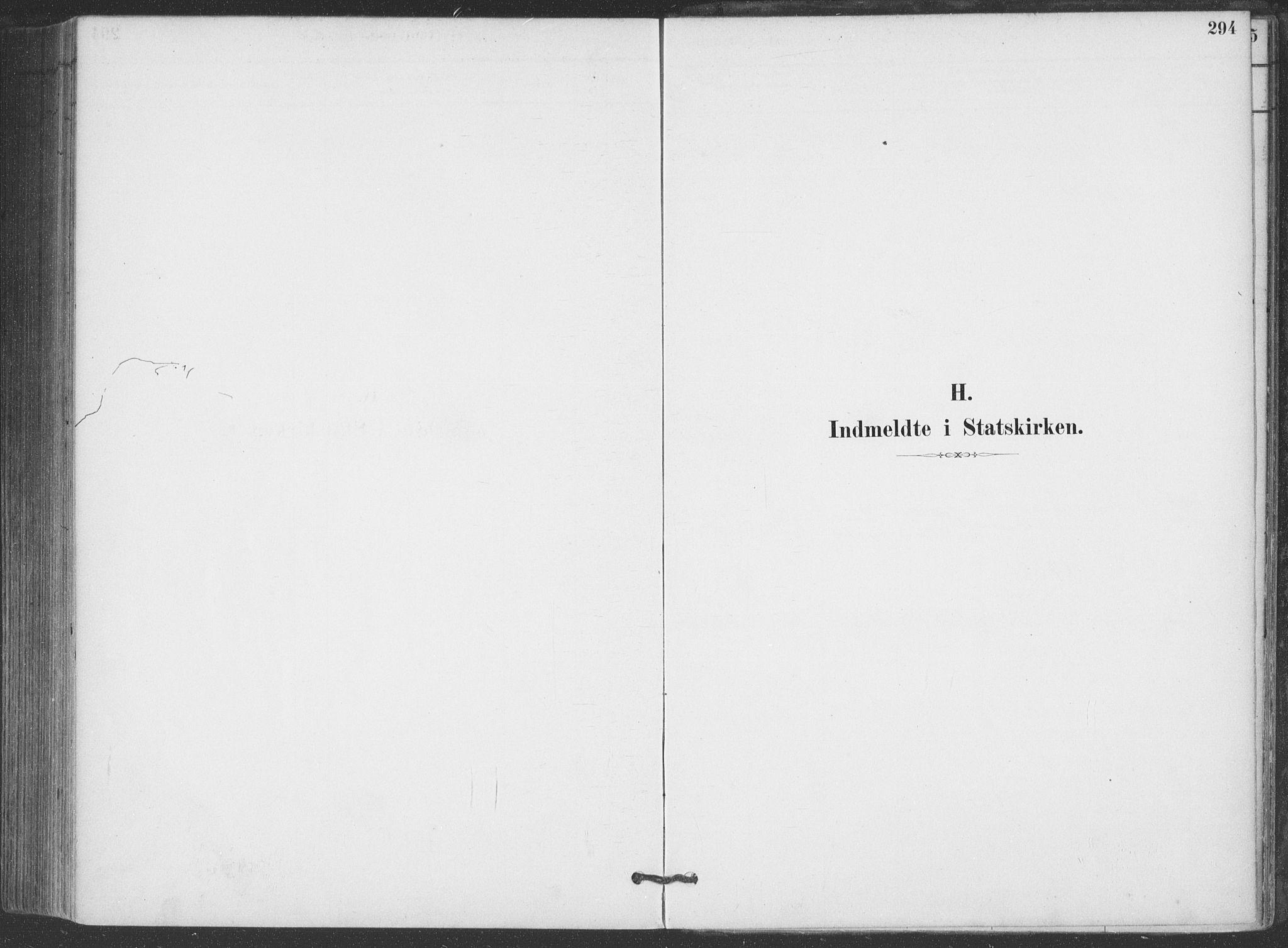 SAKO, Hjartdal kirkebøker, F/Fa/L0010: Ministerialbok nr. I 10, 1880-1929, s. 294
