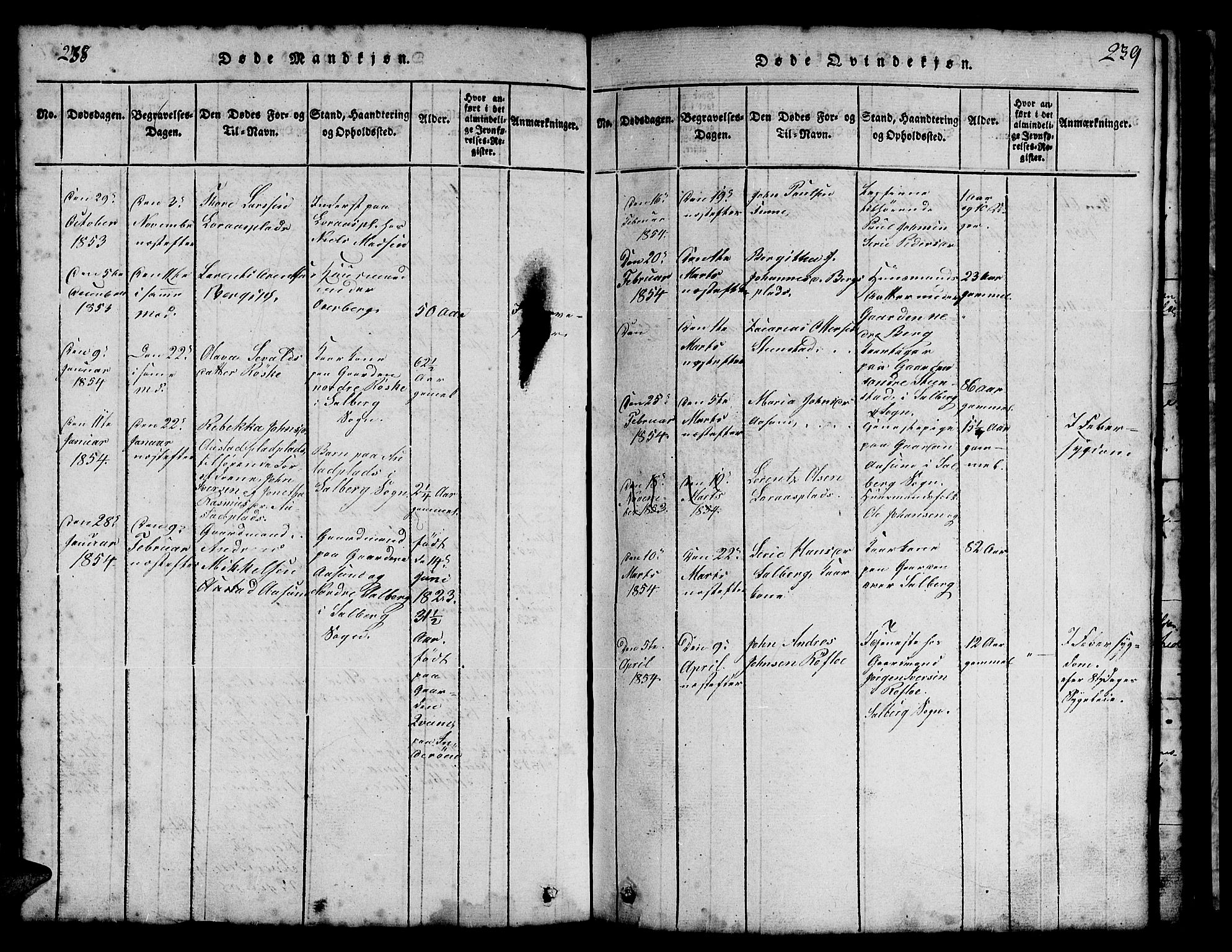 SAT, Ministerialprotokoller, klokkerbøker og fødselsregistre - Nord-Trøndelag, 731/L0310: Klokkerbok nr. 731C01, 1816-1874, s. 238-239