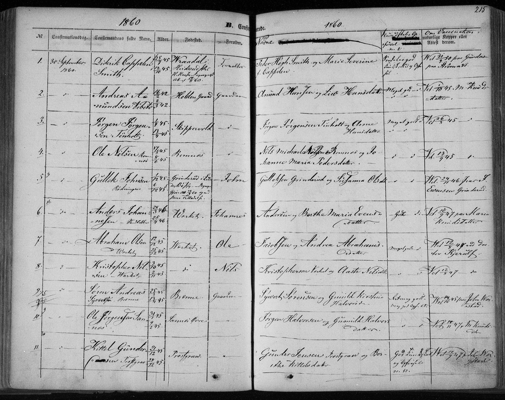 SAKO, Holla kirkebøker, F/Fa/L0005: Ministerialbok nr. 5, 1849-1860, s. 215