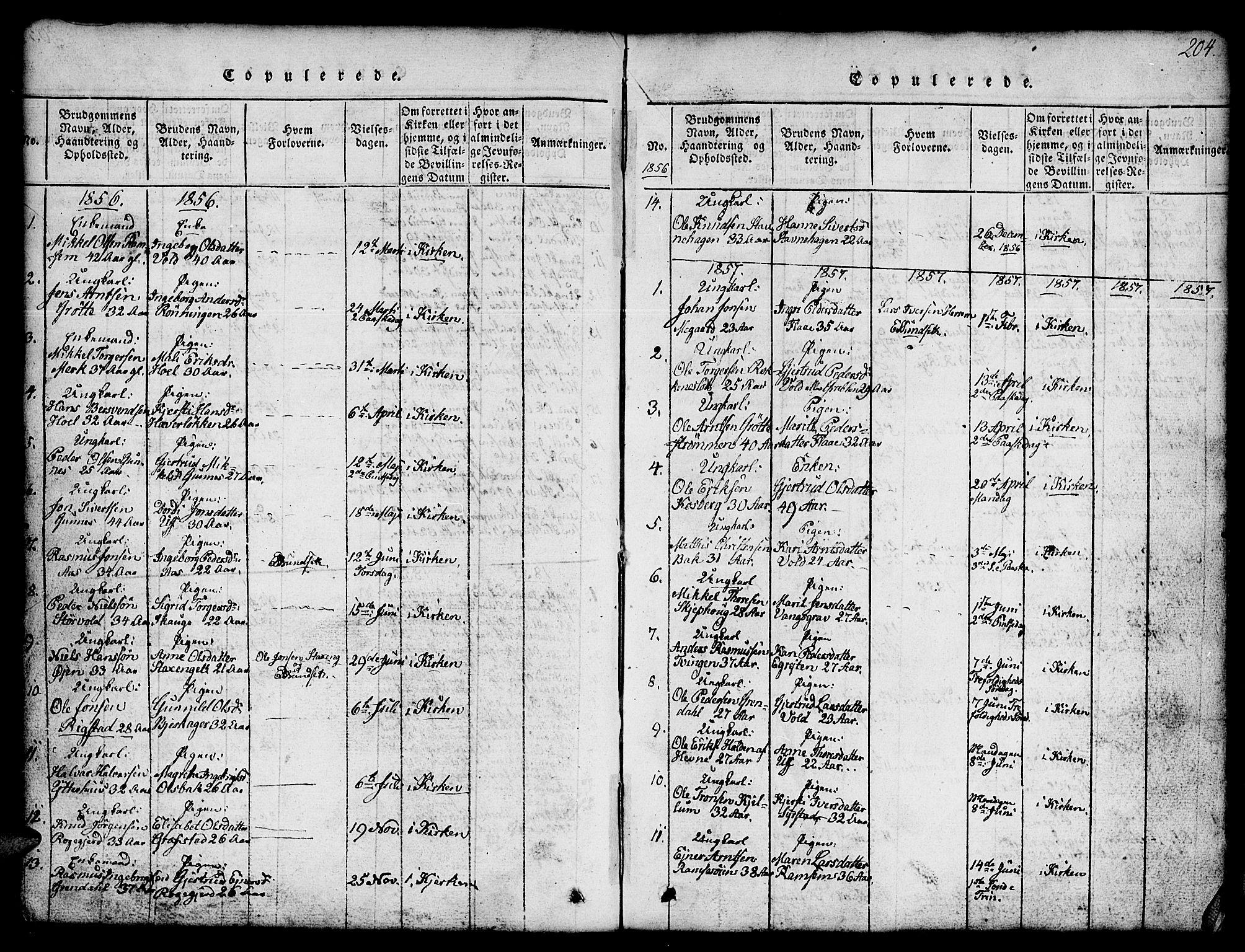 SAT, Ministerialprotokoller, klokkerbøker og fødselsregistre - Sør-Trøndelag, 674/L0874: Klokkerbok nr. 674C01, 1816-1860, s. 204