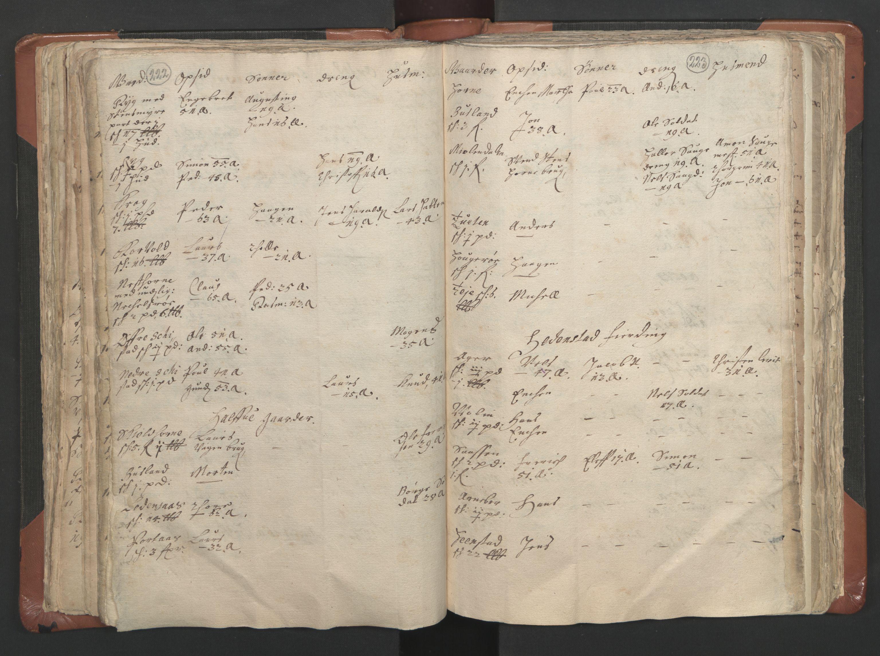 RA, Sogneprestenes manntall 1664-1666, nr. 9: Bragernes prosti, 1664-1666, s. 222-223