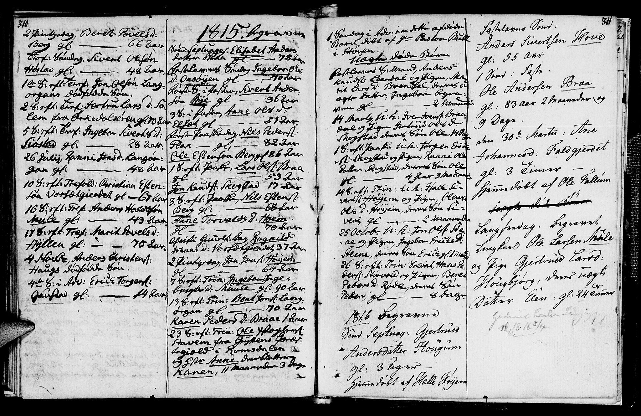 SAT, Ministerialprotokoller, klokkerbøker og fødselsregistre - Sør-Trøndelag, 612/L0371: Ministerialbok nr. 612A05, 1803-1816, s. 310-311