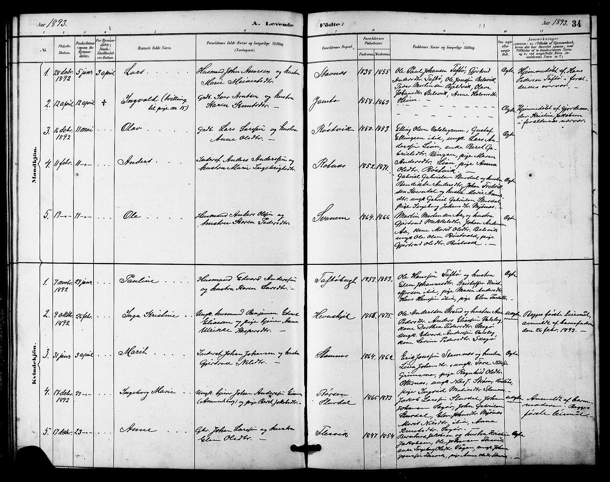 SAT, Ministerialprotokoller, klokkerbøker og fødselsregistre - Sør-Trøndelag, 633/L0519: Klokkerbok nr. 633C01, 1884-1905, s. 34