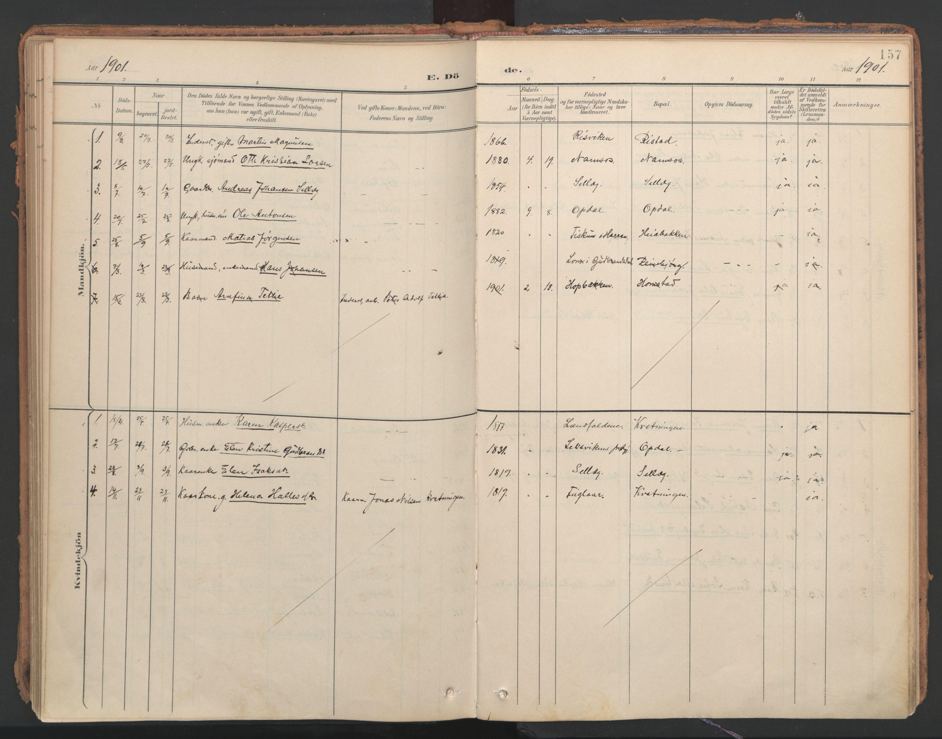 SAT, Ministerialprotokoller, klokkerbøker og fødselsregistre - Nord-Trøndelag, 766/L0564: Ministerialbok nr. 767A02, 1900-1932, s. 157