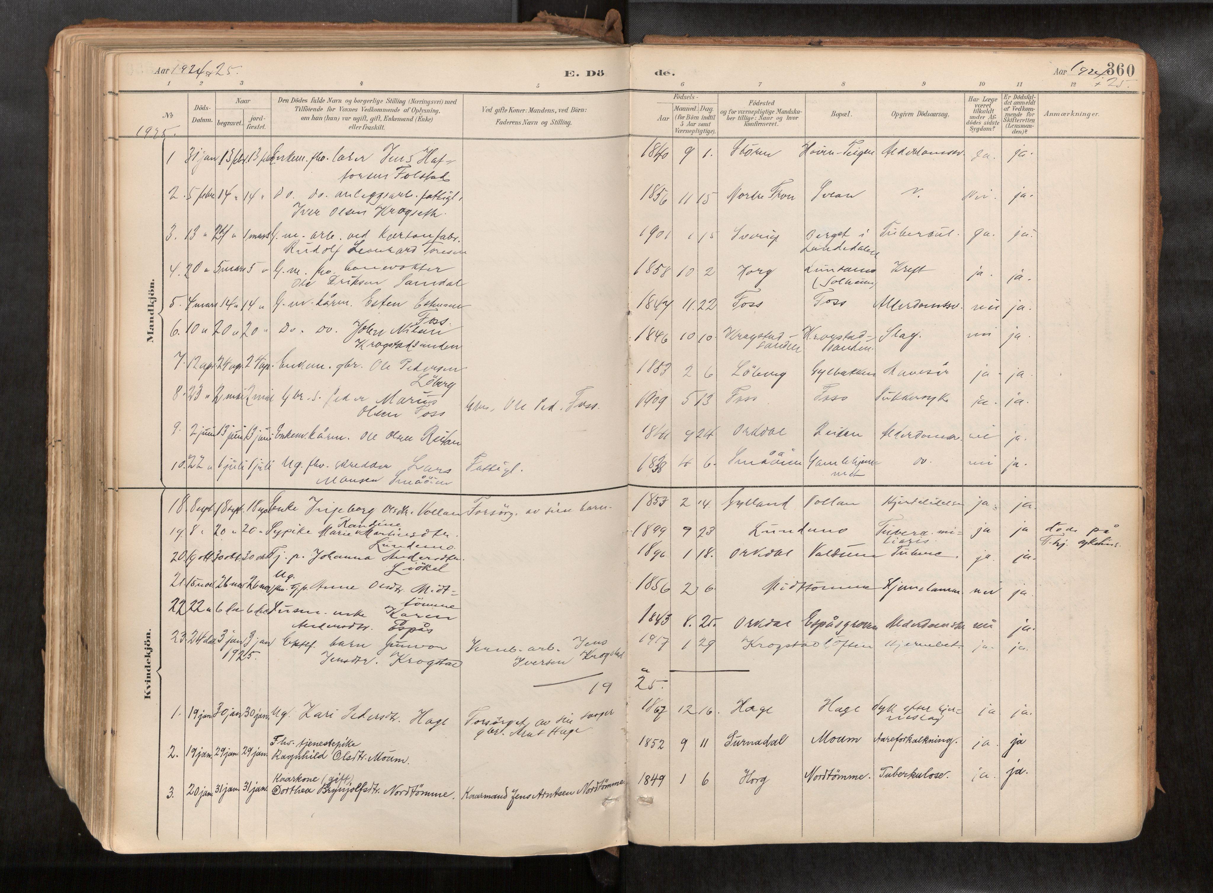 SAT, Ministerialprotokoller, klokkerbøker og fødselsregistre - Sør-Trøndelag, 692/L1105b: Ministerialbok nr. 692A06, 1891-1934, s. 360