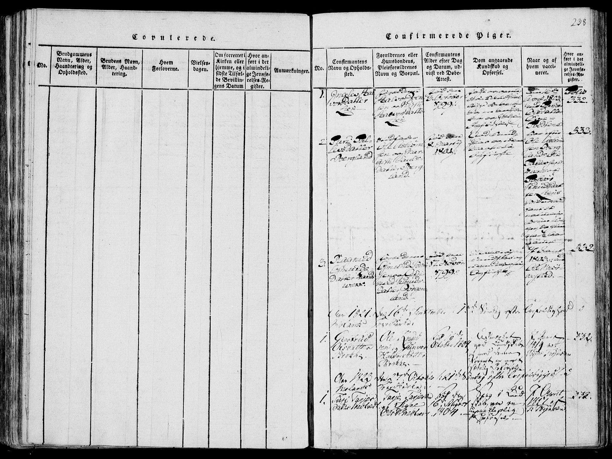 SAKO, Fyresdal kirkebøker, F/Fa/L0004: Ministerialbok nr. I 4, 1815-1854, s. 238