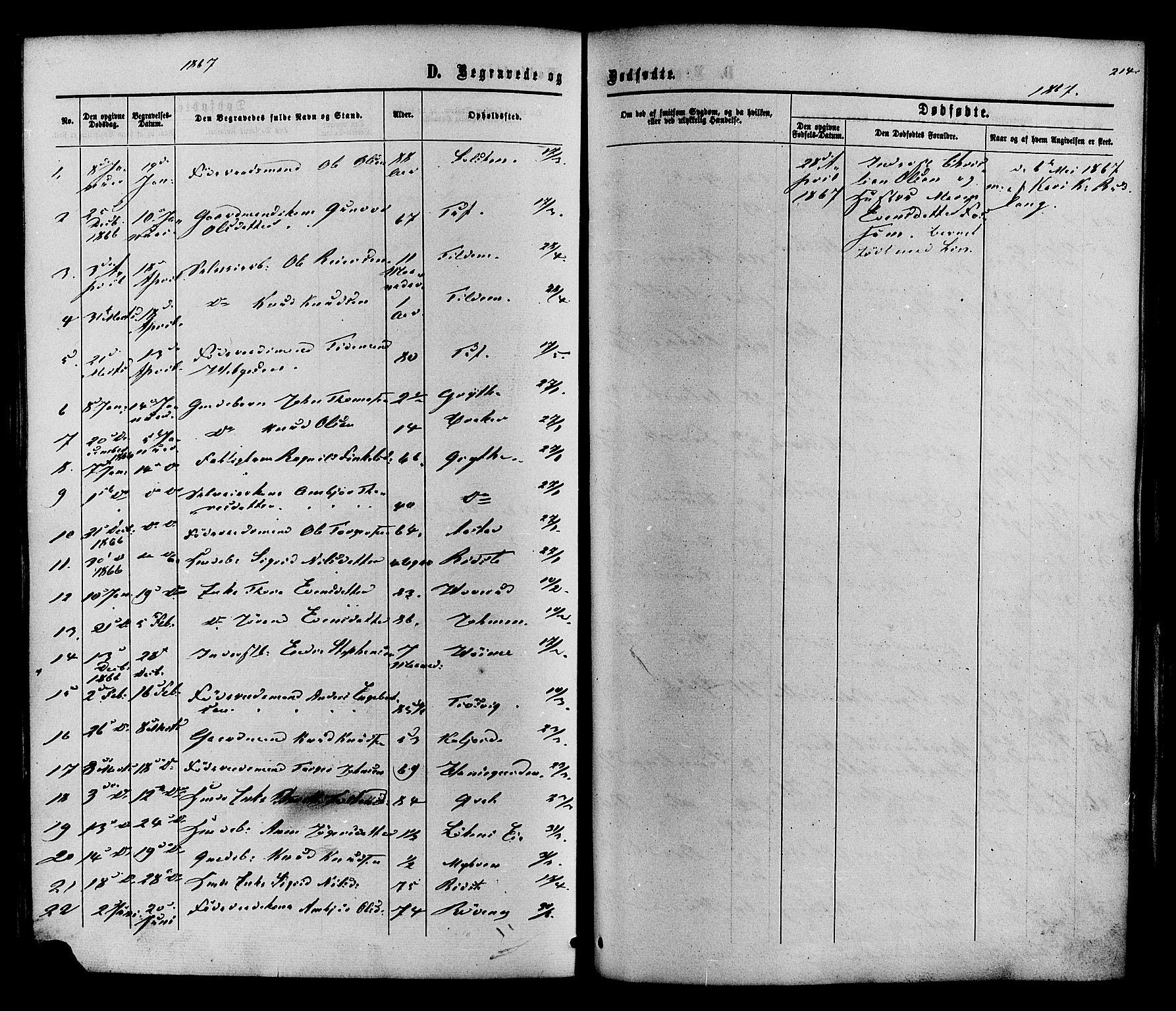 SAH, Vestre Slidre prestekontor, Ministerialbok nr. 3, 1865-1880, s. 214
