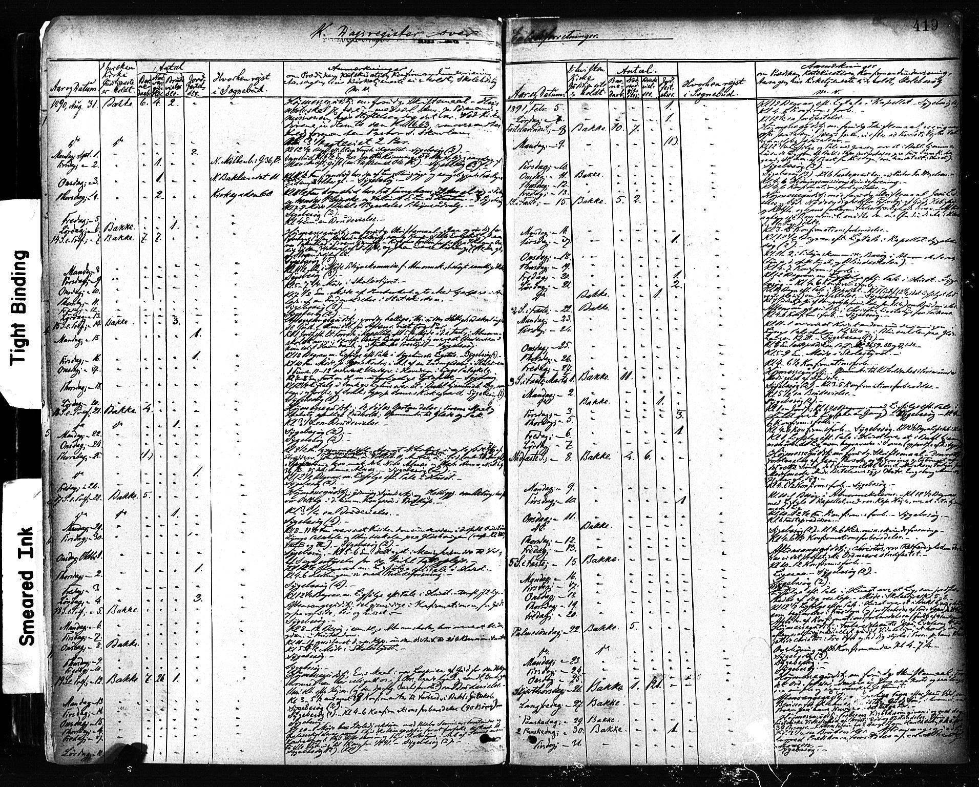 SAT, Ministerialprotokoller, klokkerbøker og fødselsregistre - Sør-Trøndelag, 604/L0189: Ministerialbok nr. 604A10, 1878-1892, s. 419