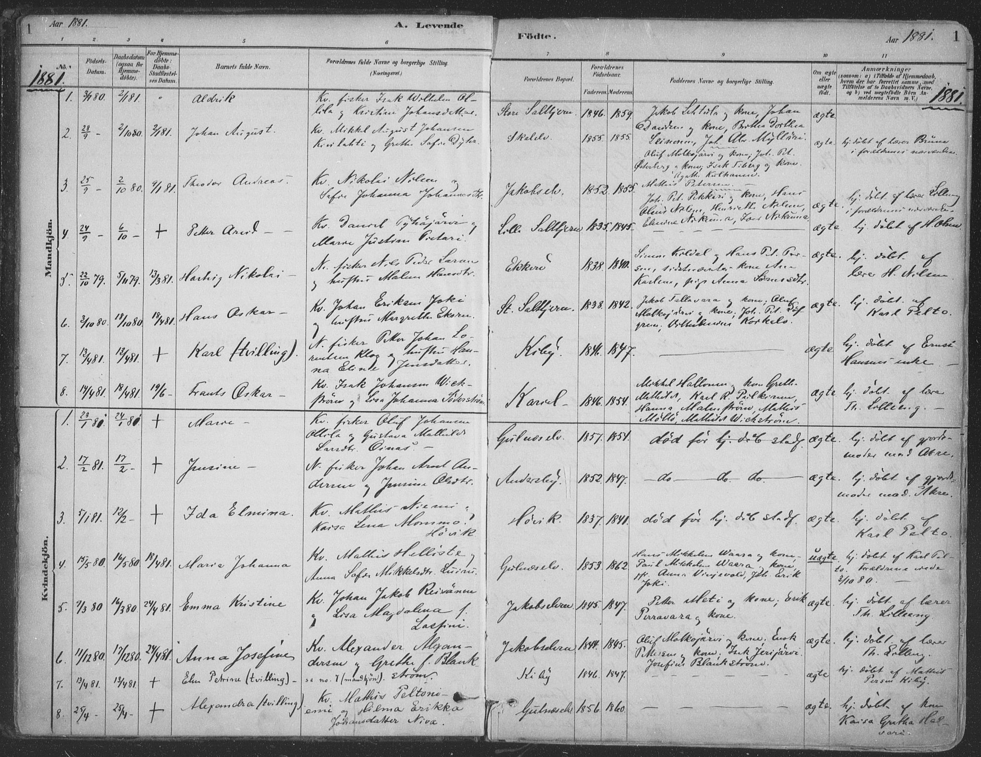 SATØ, Vadsø sokneprestkontor, H/Ha/L0009kirke: Ministerialbok nr. 9, 1881-1917, s. 1