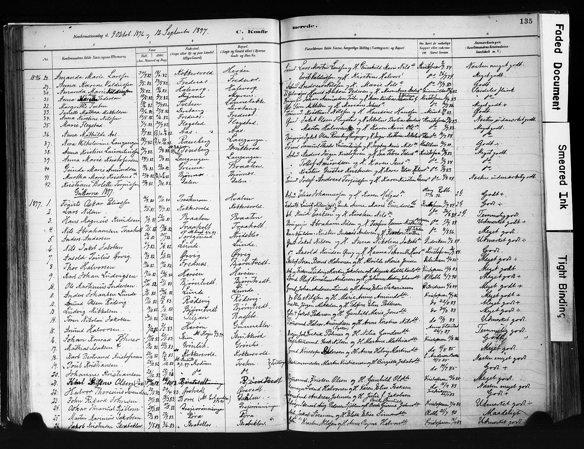 SAKO, Eidanger kirkebøker, F/Fa/L0012: Ministerialbok nr. 12, 1879-1900, s. 135