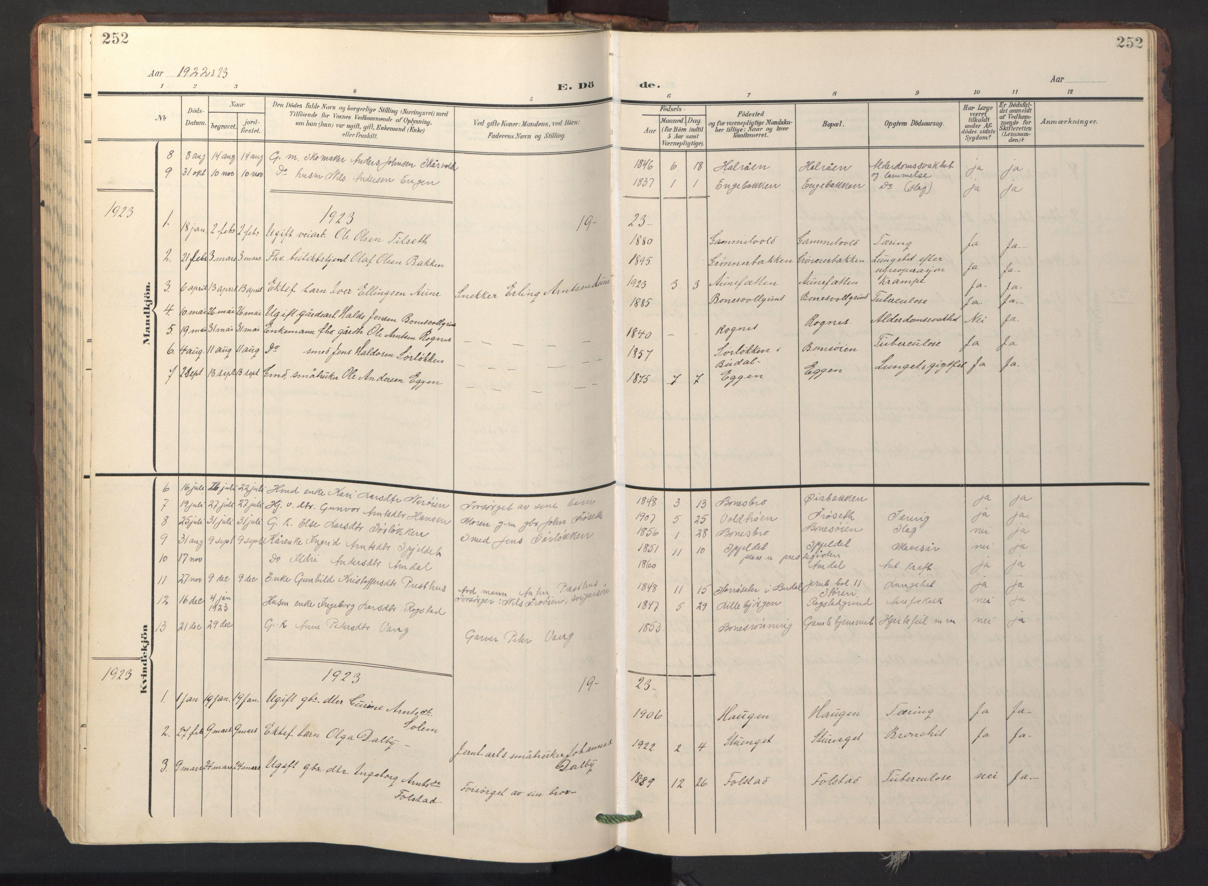 SAT, Ministerialprotokoller, klokkerbøker og fødselsregistre - Sør-Trøndelag, 687/L1019: Klokkerbok nr. 687C03, 1904-1931, s. 252