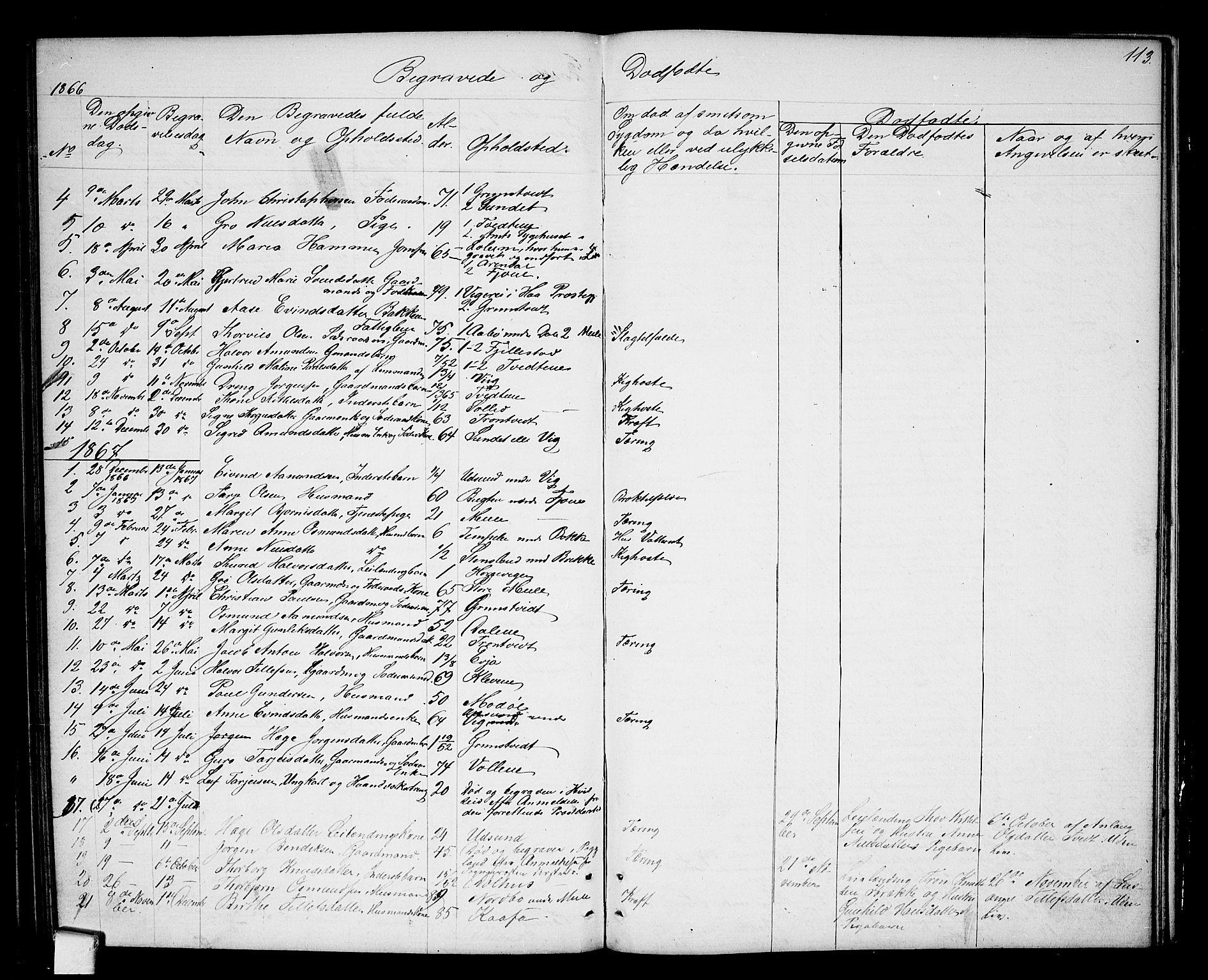 SAKO, Nissedal kirkebøker, G/Ga/L0002: Klokkerbok nr. I 2, 1861-1887, s. 113