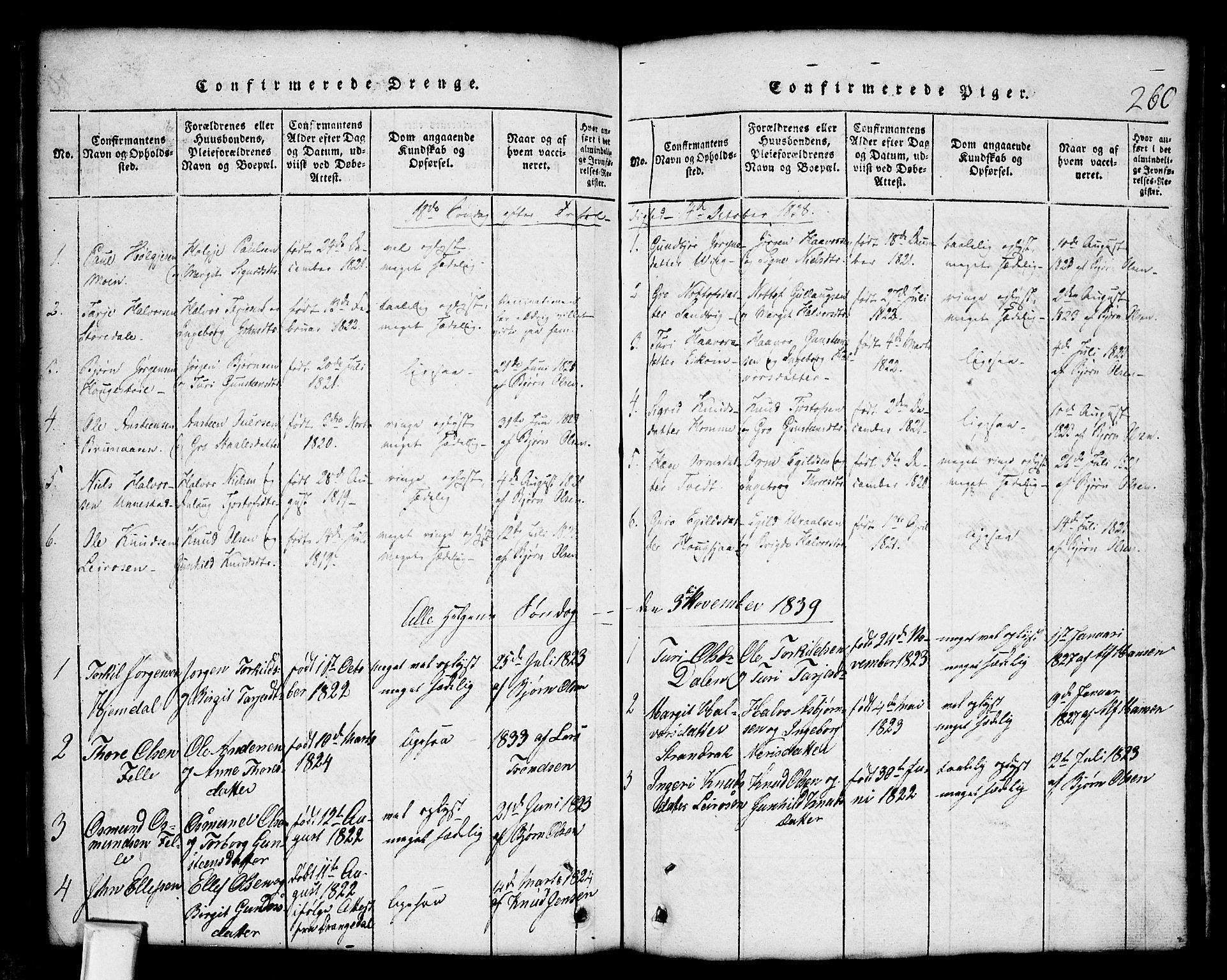 SAKO, Nissedal kirkebøker, G/Gb/L0001: Klokkerbok nr. II 1, 1814-1862, s. 260