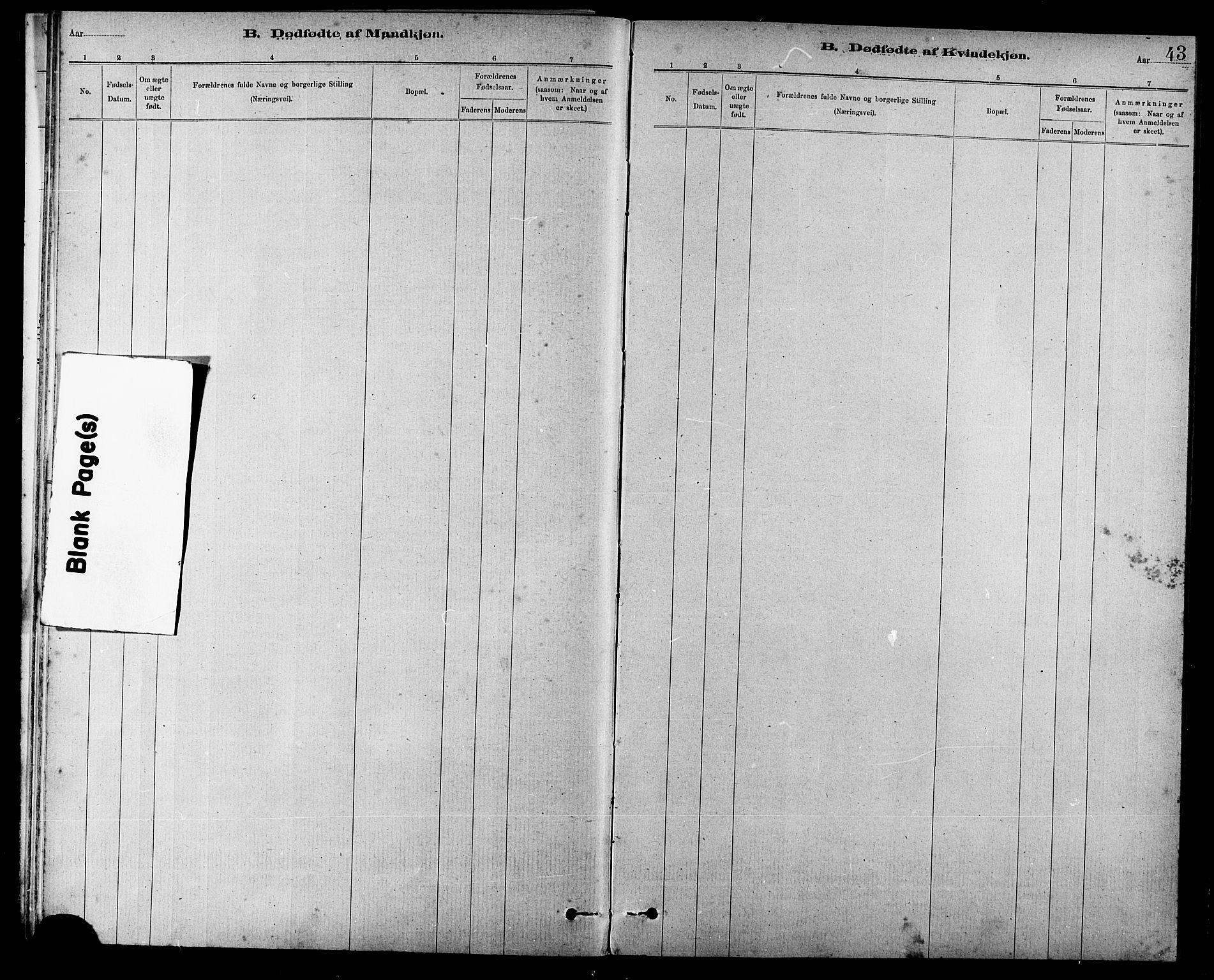 SAT, Ministerialprotokoller, klokkerbøker og fødselsregistre - Sør-Trøndelag, 666/L0790: Klokkerbok nr. 666C03, 1885-1908, s. 43