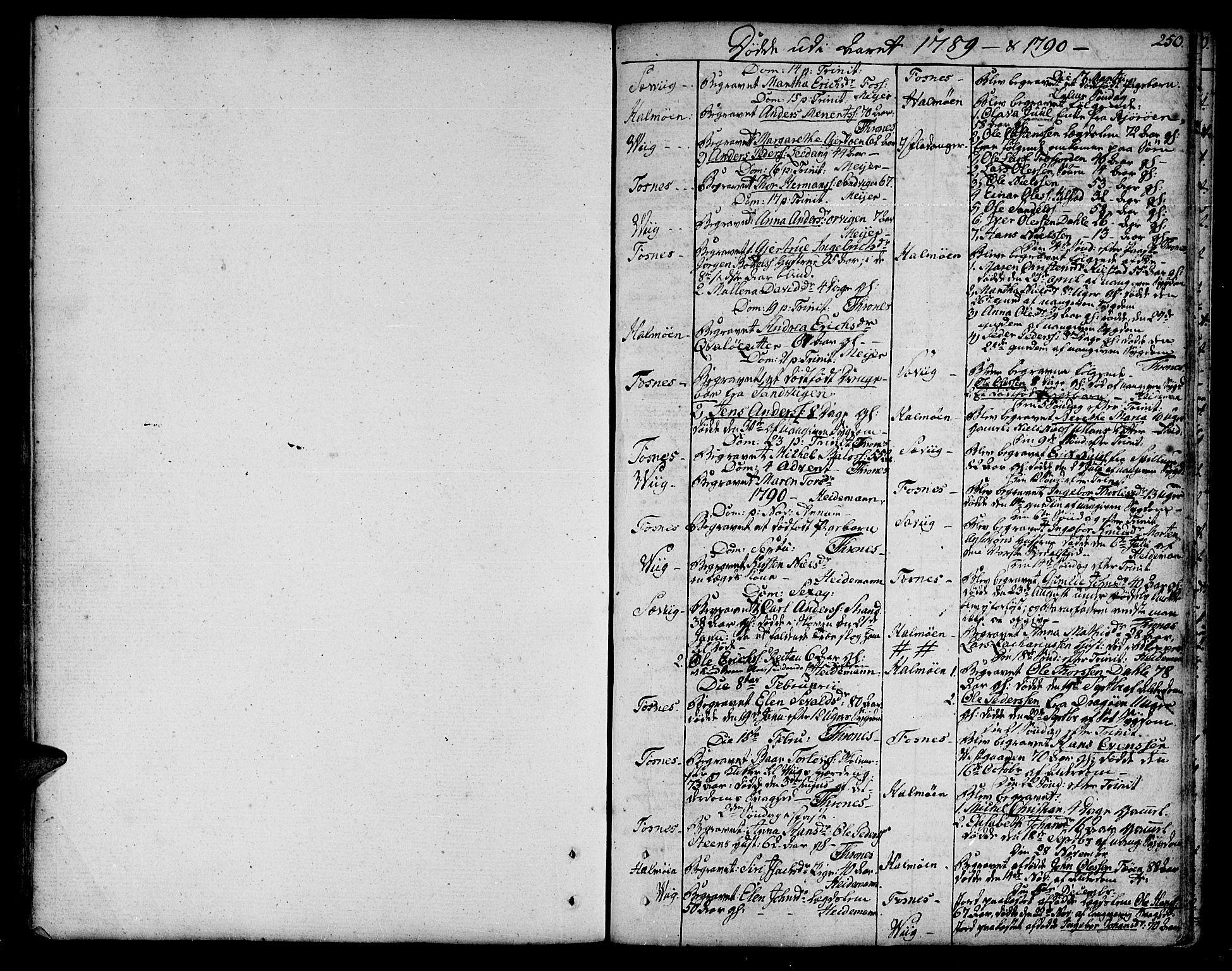SAT, Ministerialprotokoller, klokkerbøker og fødselsregistre - Nord-Trøndelag, 773/L0608: Ministerialbok nr. 773A02, 1784-1816, s. 250
