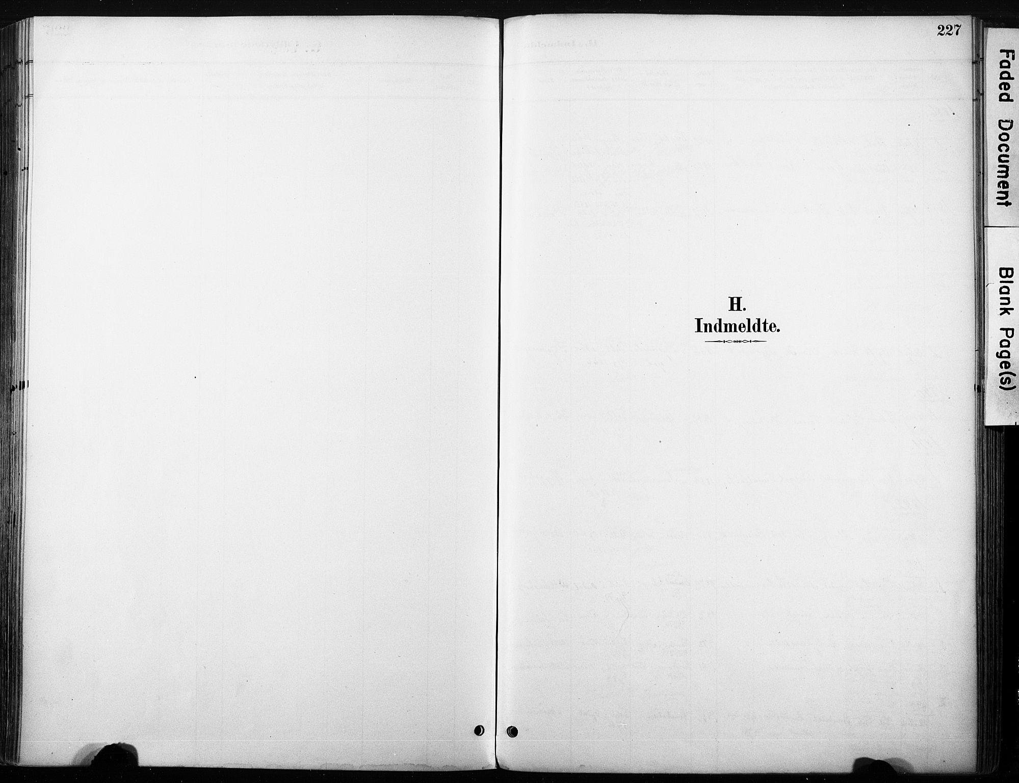 SAKO, Nore kirkebøker, F/Fb/L0002: Ministerialbok nr. II 2, 1886-1906, s. 227