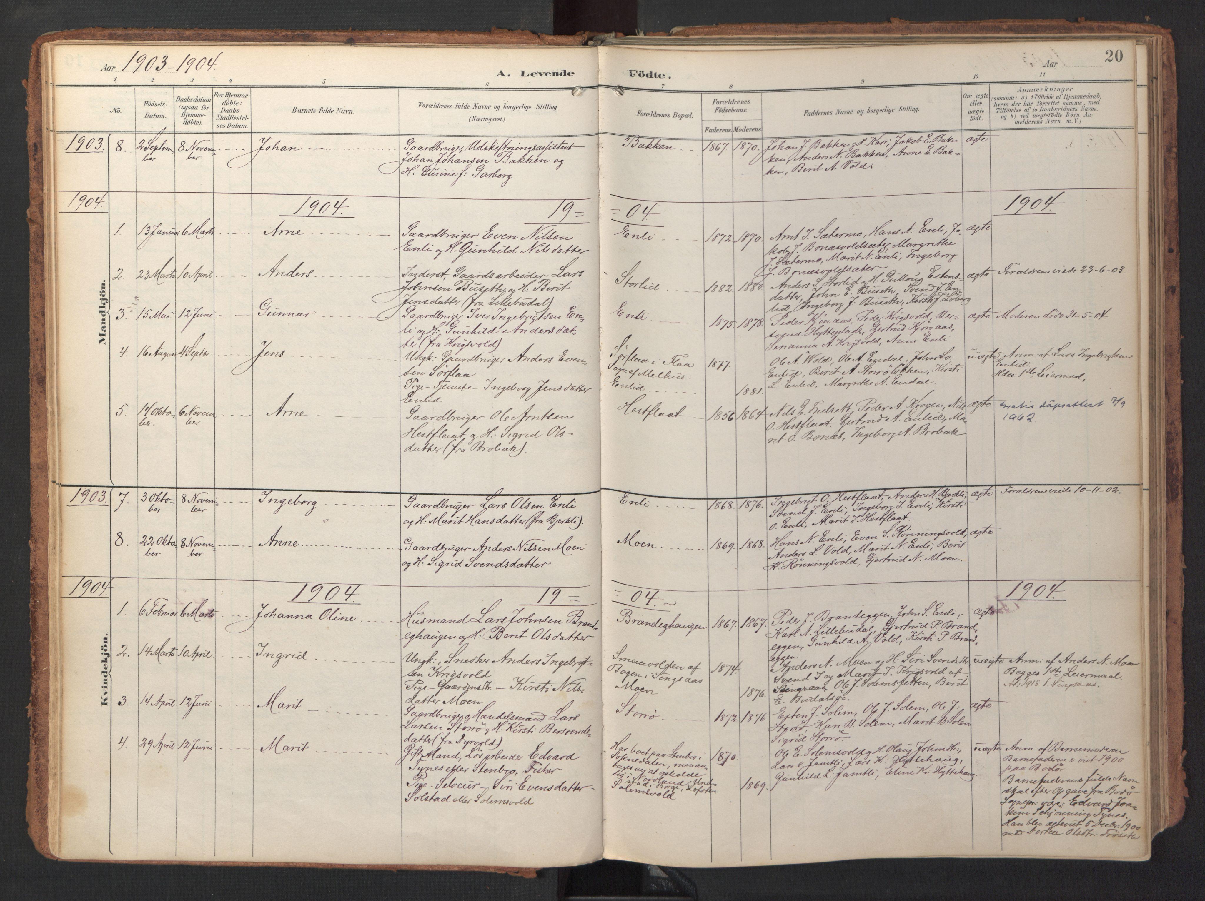SAT, Ministerialprotokoller, klokkerbøker og fødselsregistre - Sør-Trøndelag, 690/L1050: Ministerialbok nr. 690A01, 1889-1929, s. 20