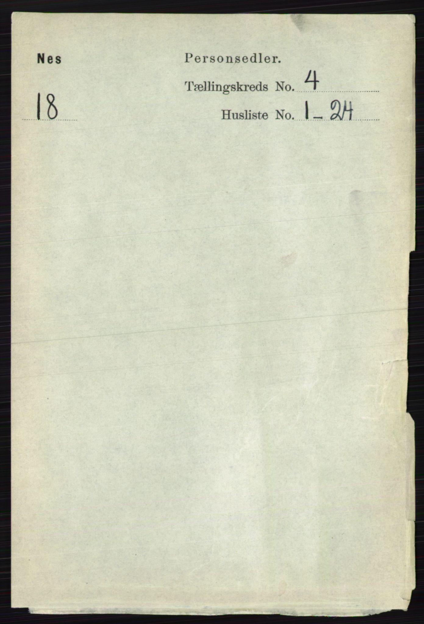 RA, Folketelling 1891 for 0236 Nes herred, 1891, s. 2263
