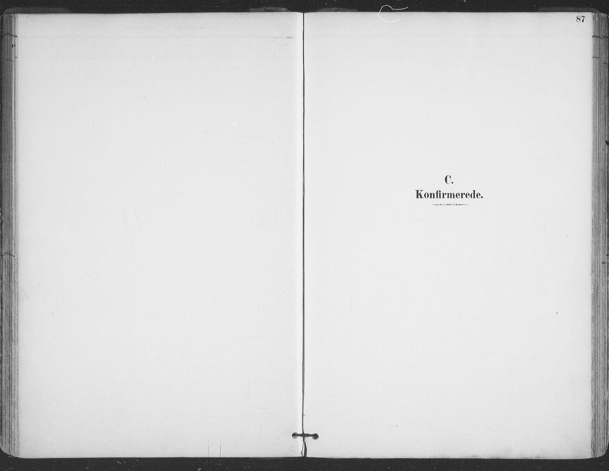 SATØ, Vadsø sokneprestkontor, H/Ha/L0006kirke: Ministerialbok nr. 6, 1885-1895, s. 87