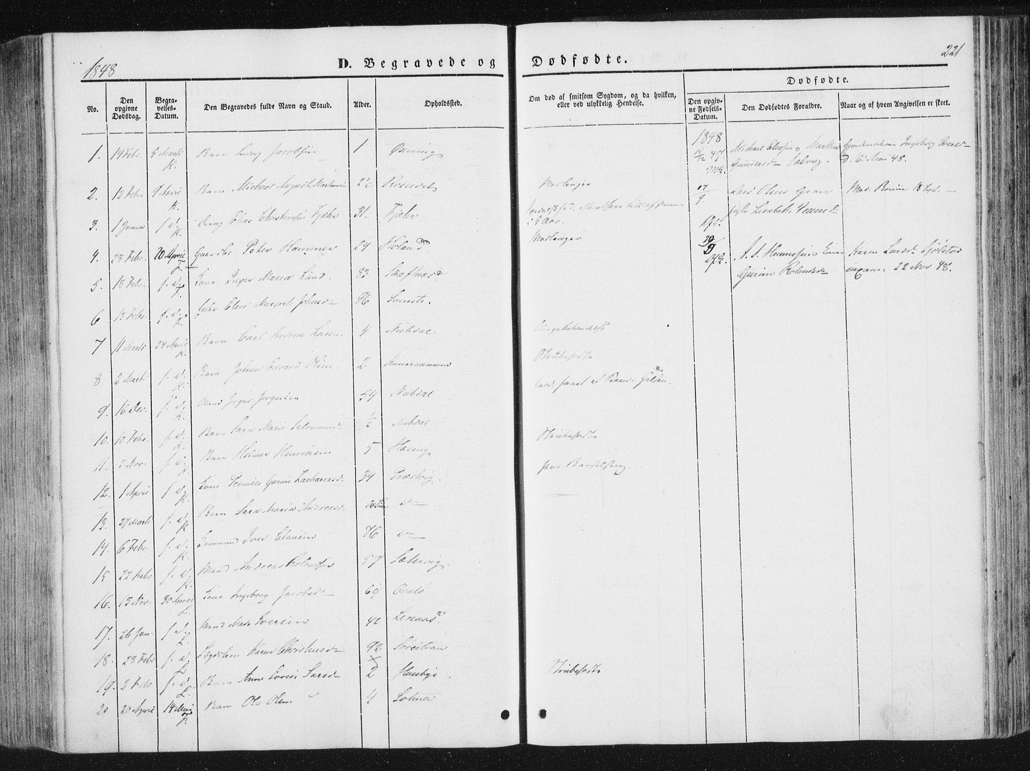 SAT, Ministerialprotokoller, klokkerbøker og fødselsregistre - Nord-Trøndelag, 780/L0640: Ministerialbok nr. 780A05, 1845-1856, s. 221