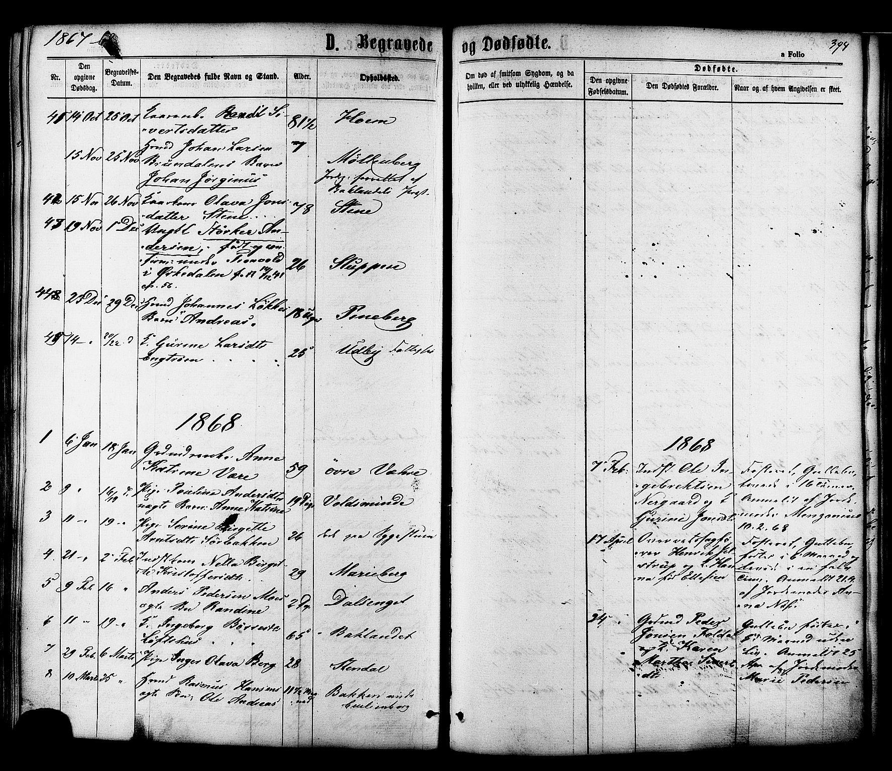 SAT, Ministerialprotokoller, klokkerbøker og fødselsregistre - Sør-Trøndelag, 606/L0293: Ministerialbok nr. 606A08, 1866-1877, s. 394