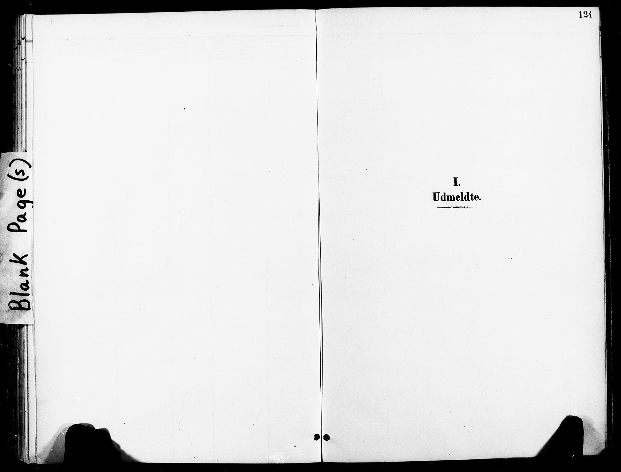 SAT, Ministerialprotokoller, klokkerbøker og fødselsregistre - Nord-Trøndelag, 740/L0379: Ministerialbok nr. 740A02, 1895-1907, s. 124