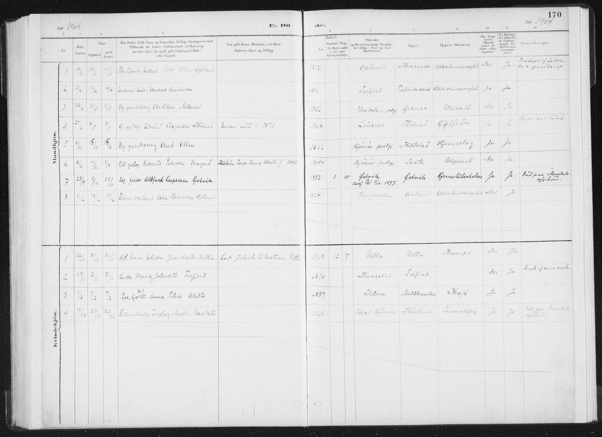 SAT, Ministerialprotokoller, klokkerbøker og fødselsregistre - Nord-Trøndelag, 771/L0597: Ministerialbok nr. 771A04, 1885-1910, s. 170