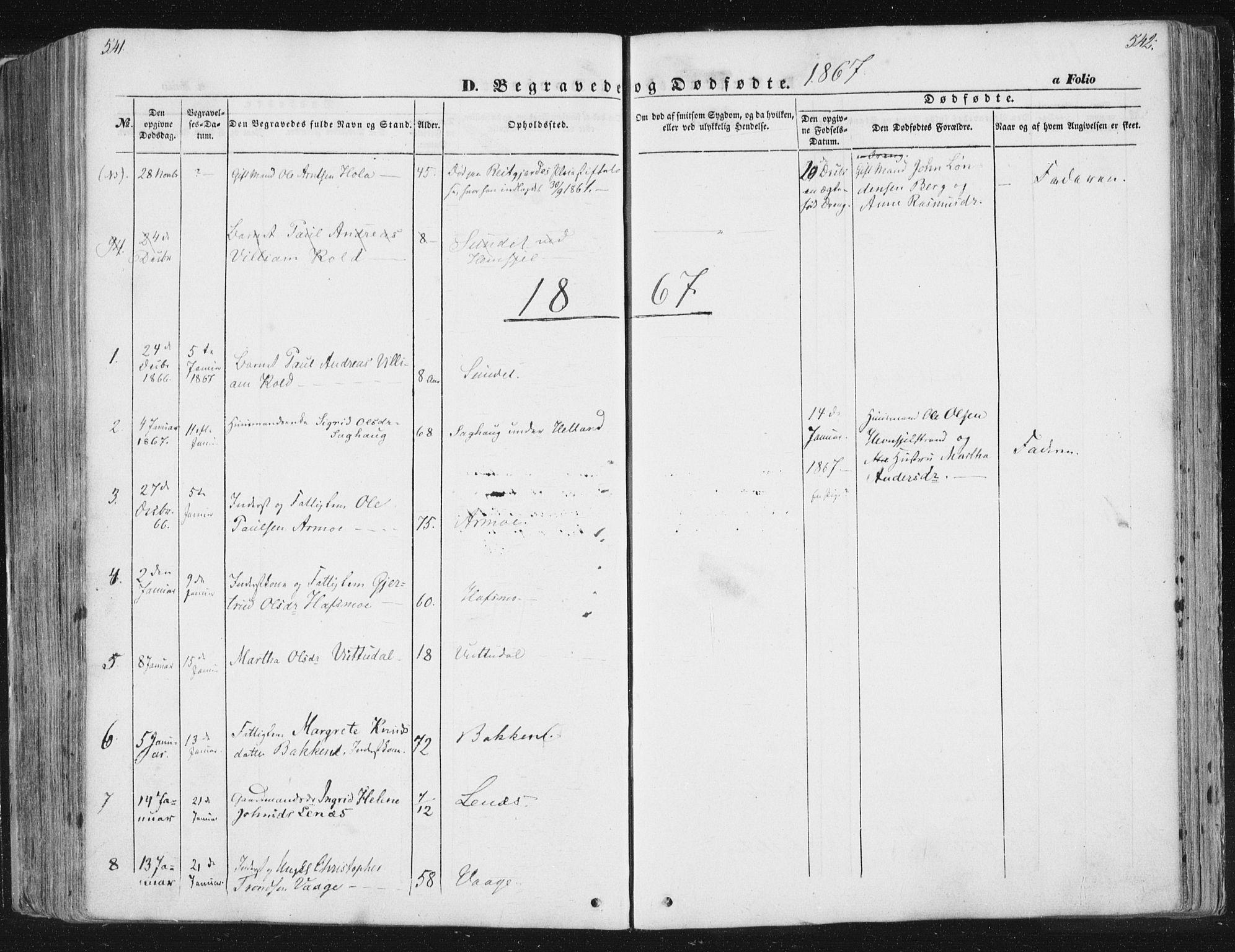 SAT, Ministerialprotokoller, klokkerbøker og fødselsregistre - Sør-Trøndelag, 630/L0494: Ministerialbok nr. 630A07, 1852-1868, s. 541-542