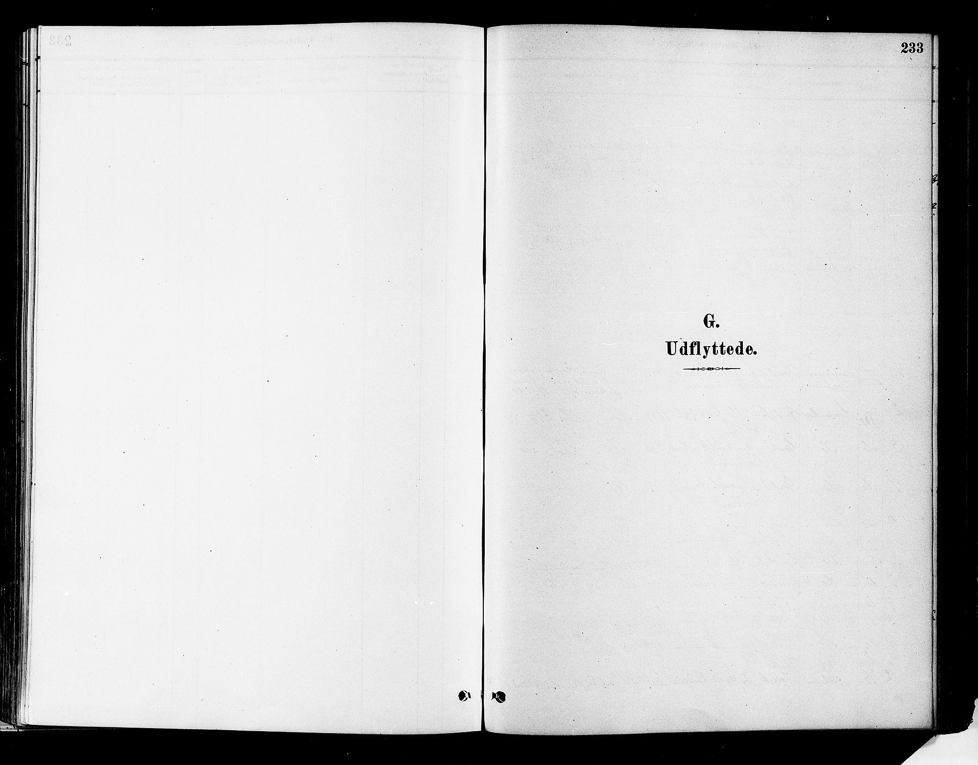 SAKO, Flesberg kirkebøker, F/Fa/L0008: Ministerialbok nr. I 8, 1879-1899, s. 233