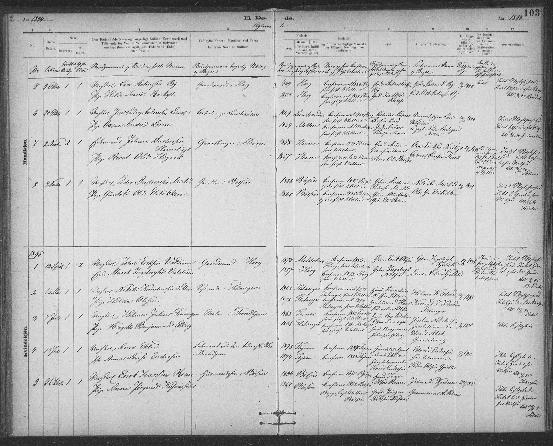 SAT, Ministerialprotokoller, klokkerbøker og fødselsregistre - Sør-Trøndelag, 623/L0470: Ministerialbok nr. 623A04, 1884-1938, s. 103