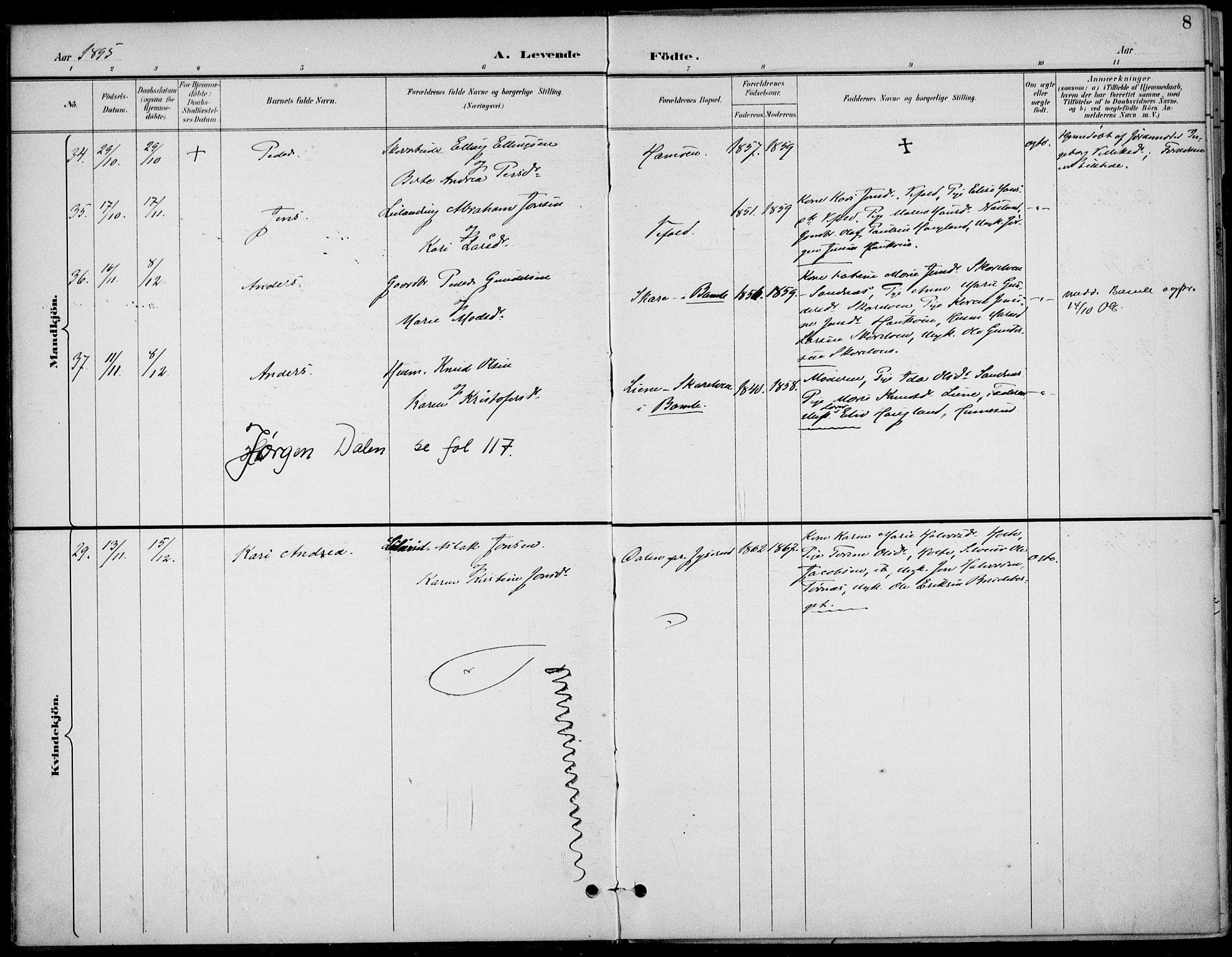 SAKO, Drangedal kirkebøker, F/Fa/L0012: Ministerialbok nr. 12, 1895-1905, s. 8