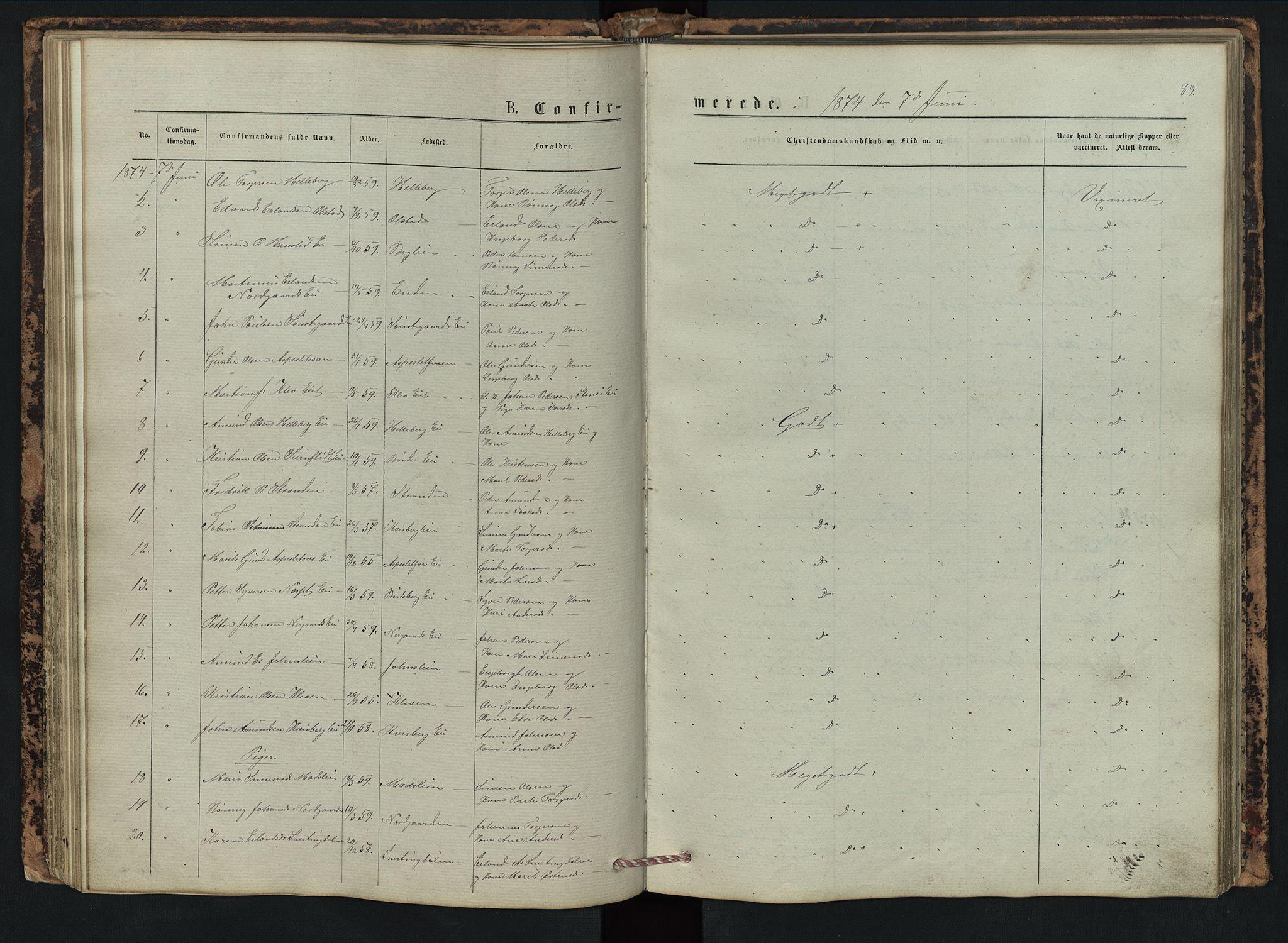 SAH, Vestre Gausdal prestekontor, Klokkerbok nr. 2, 1874-1897, s. 89