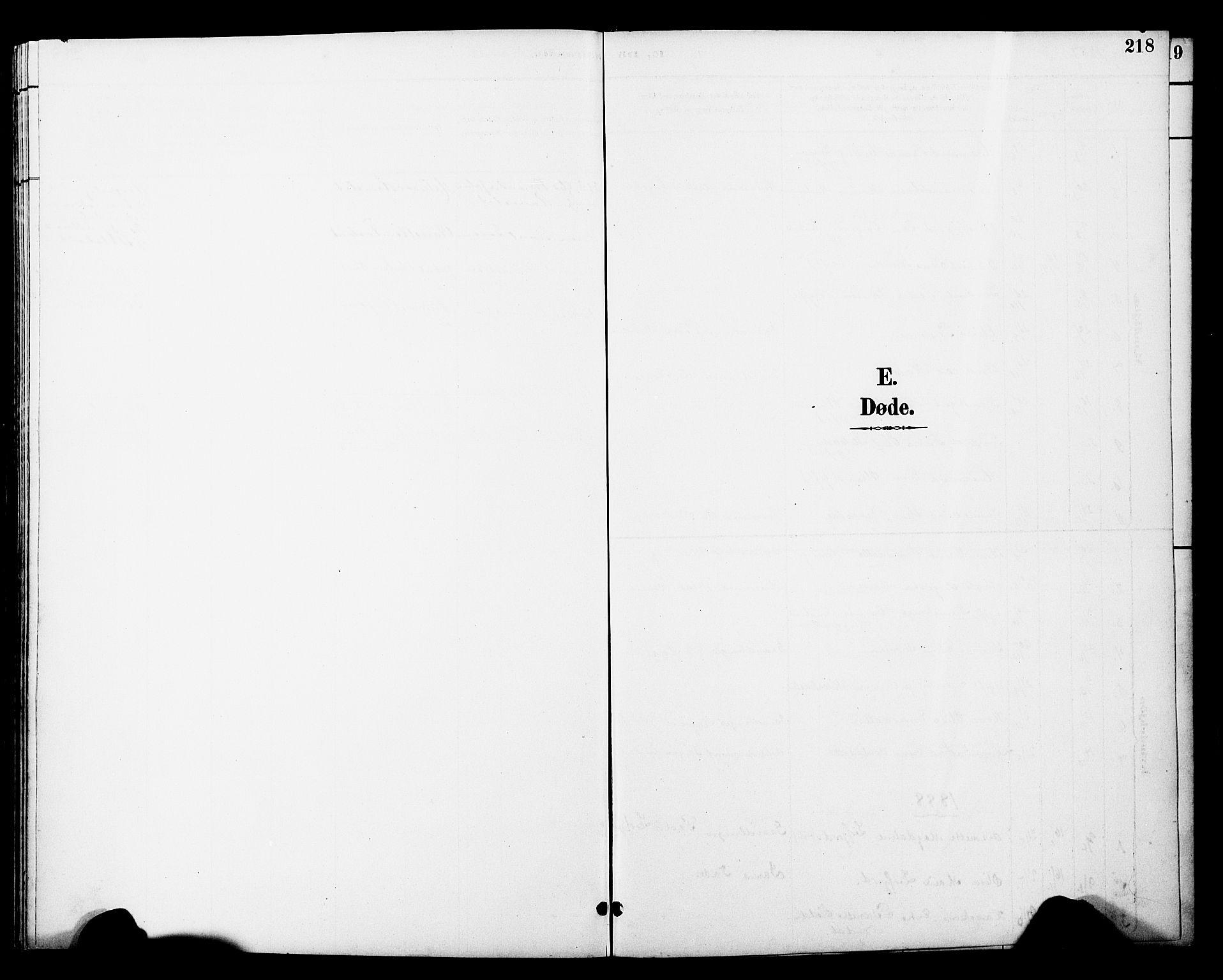 SAT, Ministerialprotokoller, klokkerbøker og fødselsregistre - Nord-Trøndelag, 774/L0628: Ministerialbok nr. 774A02, 1887-1903, s. 218