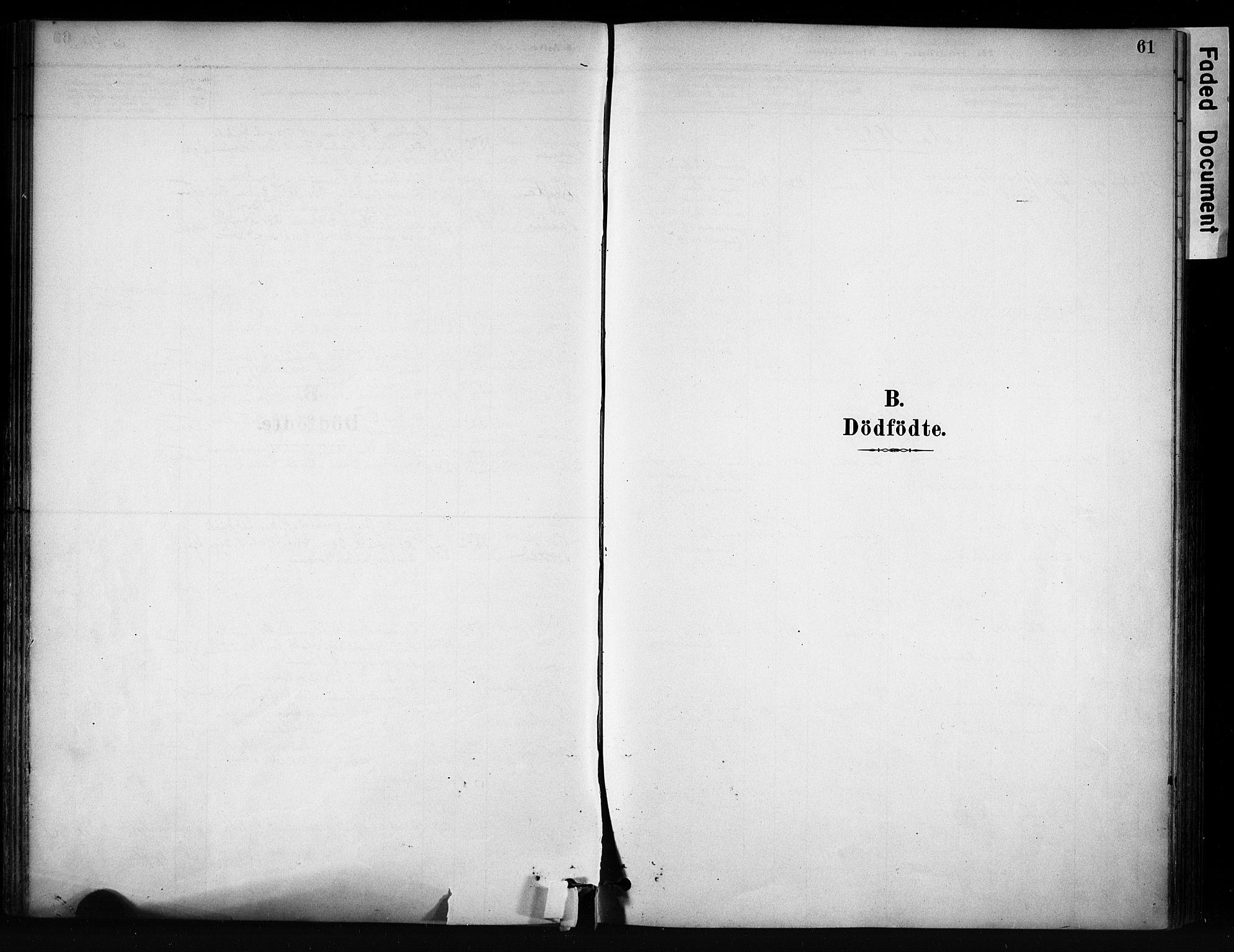 SAH, Vang prestekontor, Valdres, Ministerialbok nr. 9, 1882-1914, s. 61