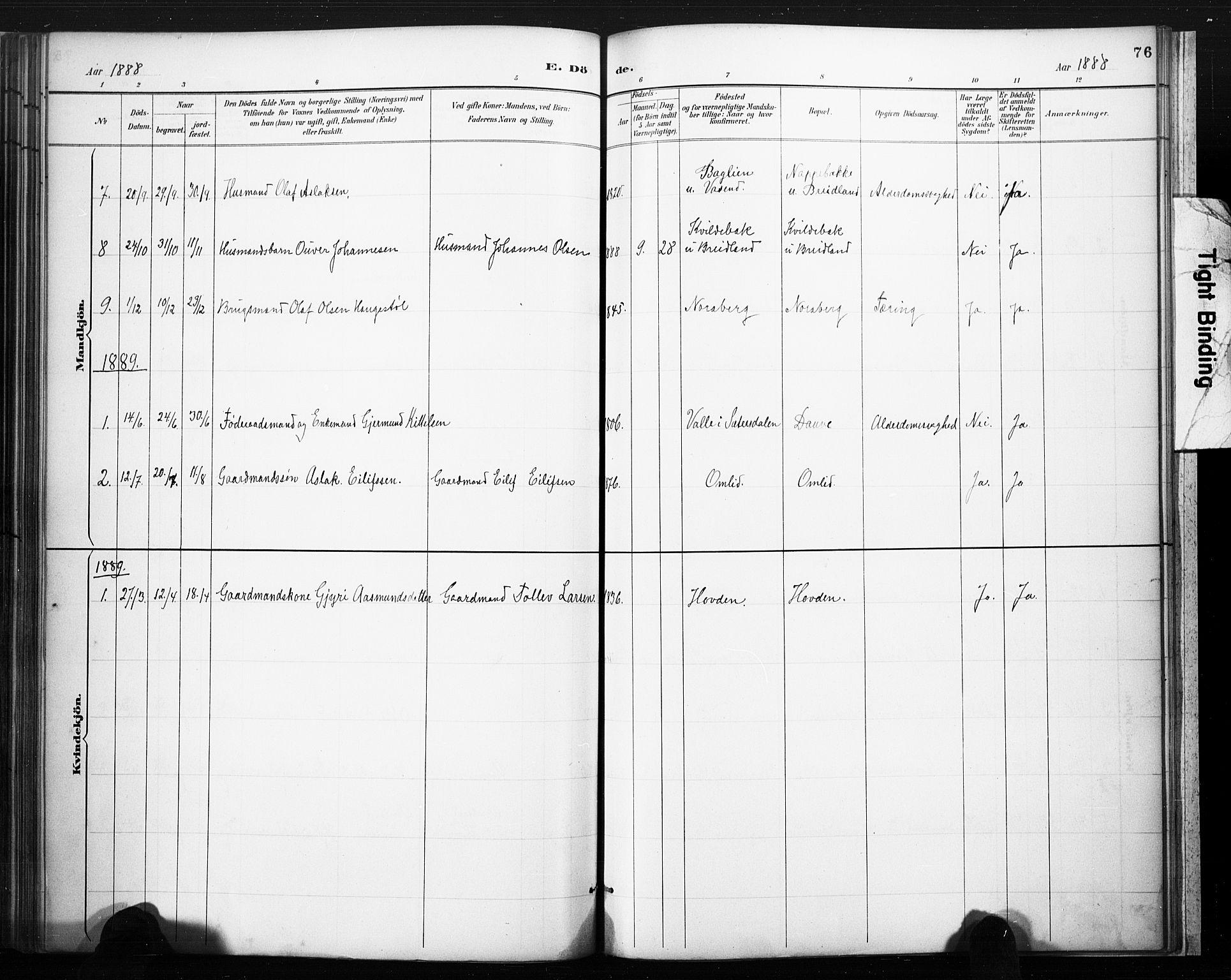 SAKO, Lårdal kirkebøker, F/Fc/L0002: Ministerialbok nr. III 2, 1887-1906, s. 76