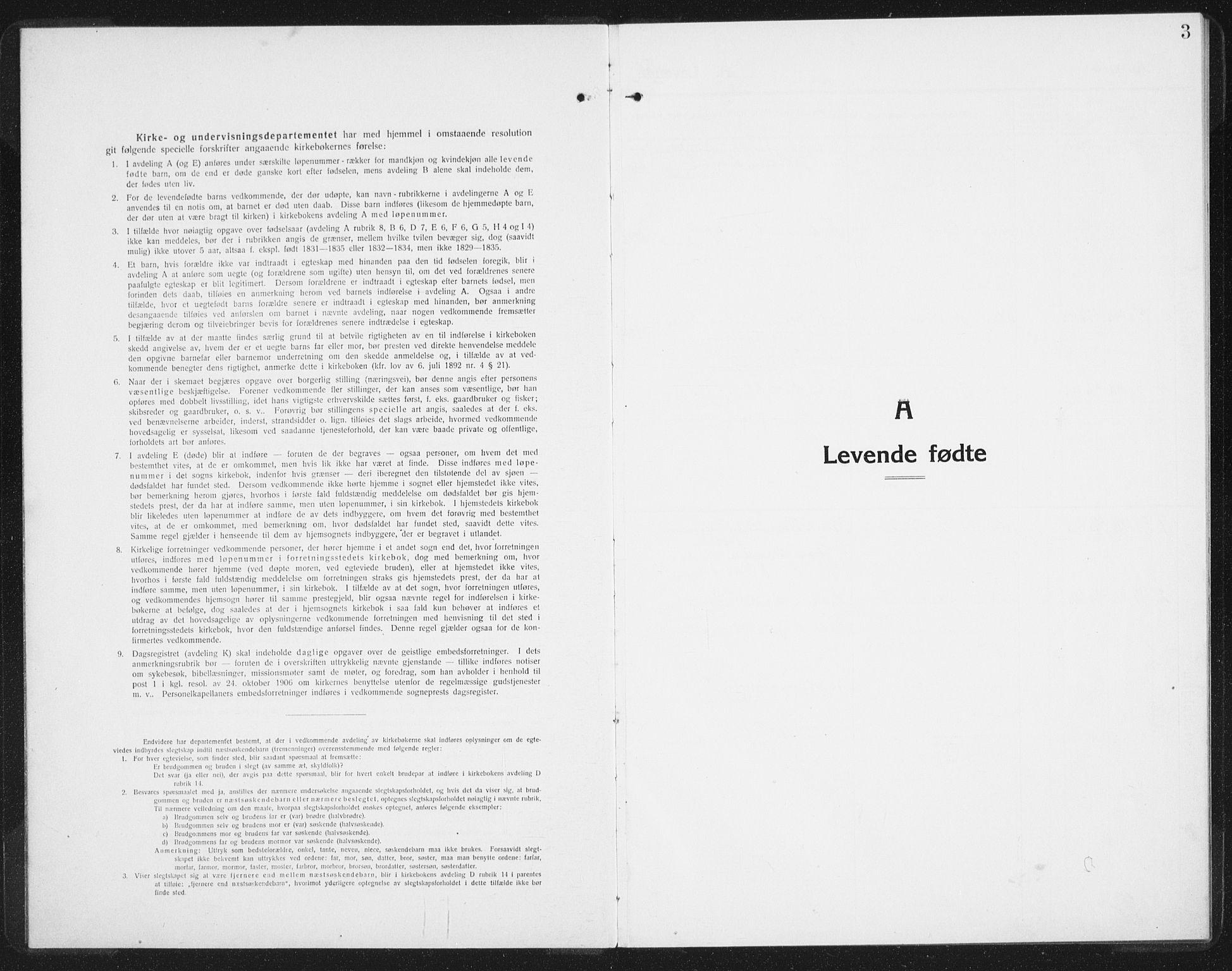 SAT, Ministerialprotokoller, klokkerbøker og fødselsregistre - Nordland, 886/L1226: Klokkerbok nr. 886C03, 1916-1935, s. 3