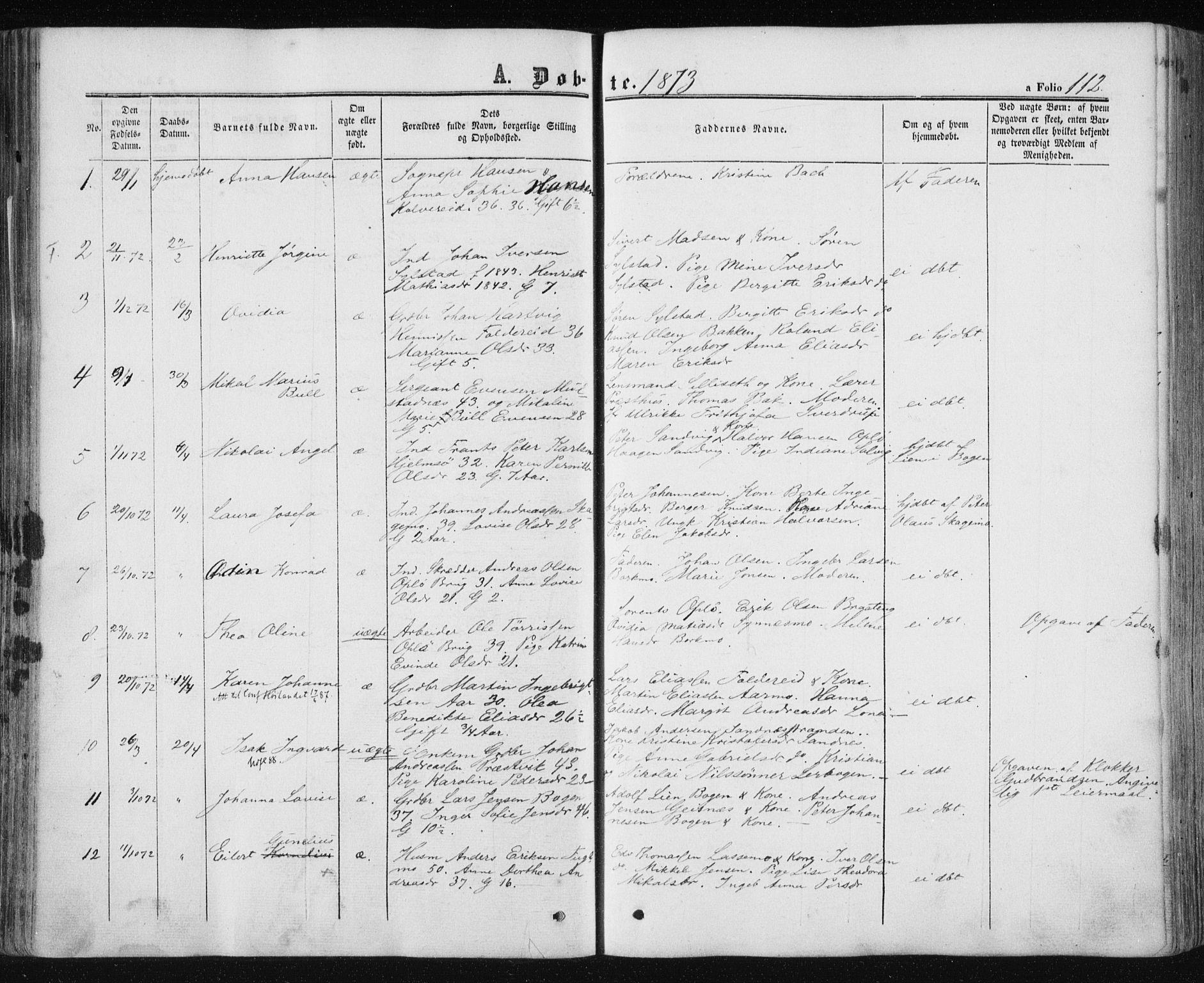 SAT, Ministerialprotokoller, klokkerbøker og fødselsregistre - Nord-Trøndelag, 780/L0641: Ministerialbok nr. 780A06, 1857-1874, s. 112