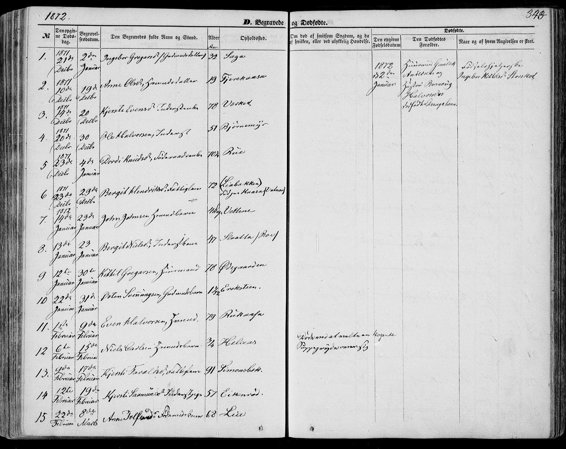 SAKO, Bø kirkebøker, F/Fa/L0009: Ministerialbok nr. 9, 1862-1879, s. 343